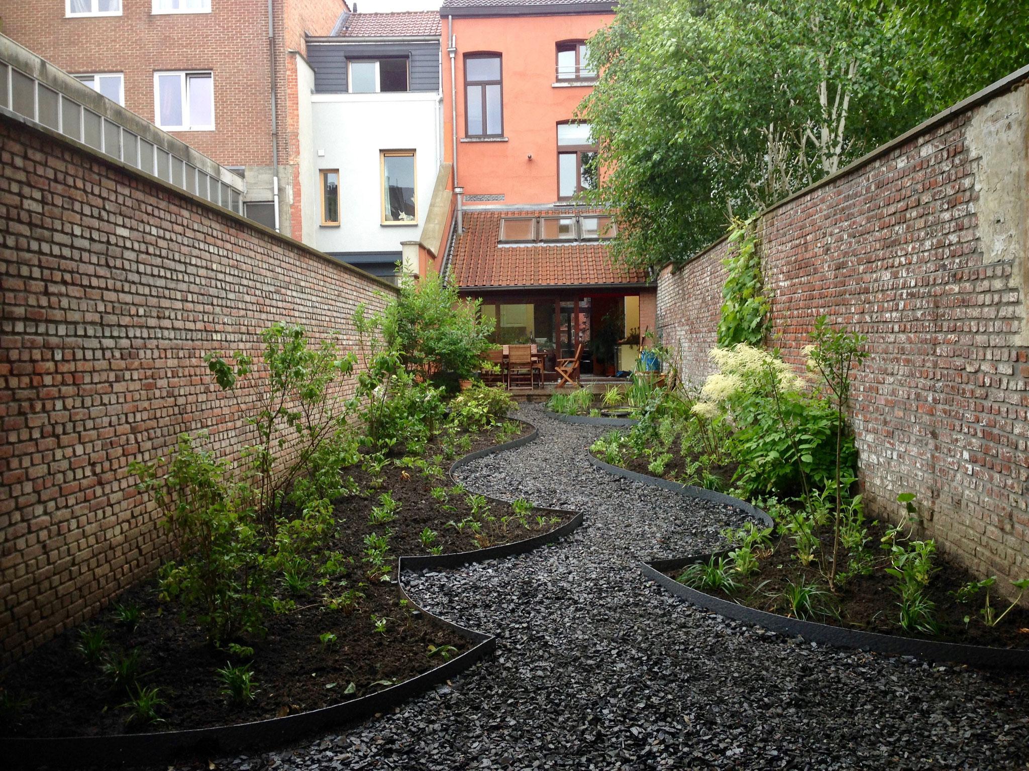 Jardin de ville 120m2 - Après plantations - Vue depuis le fond du jardin - Soleil du soir sous le noisetier. Amenagement jardin Bruxelles