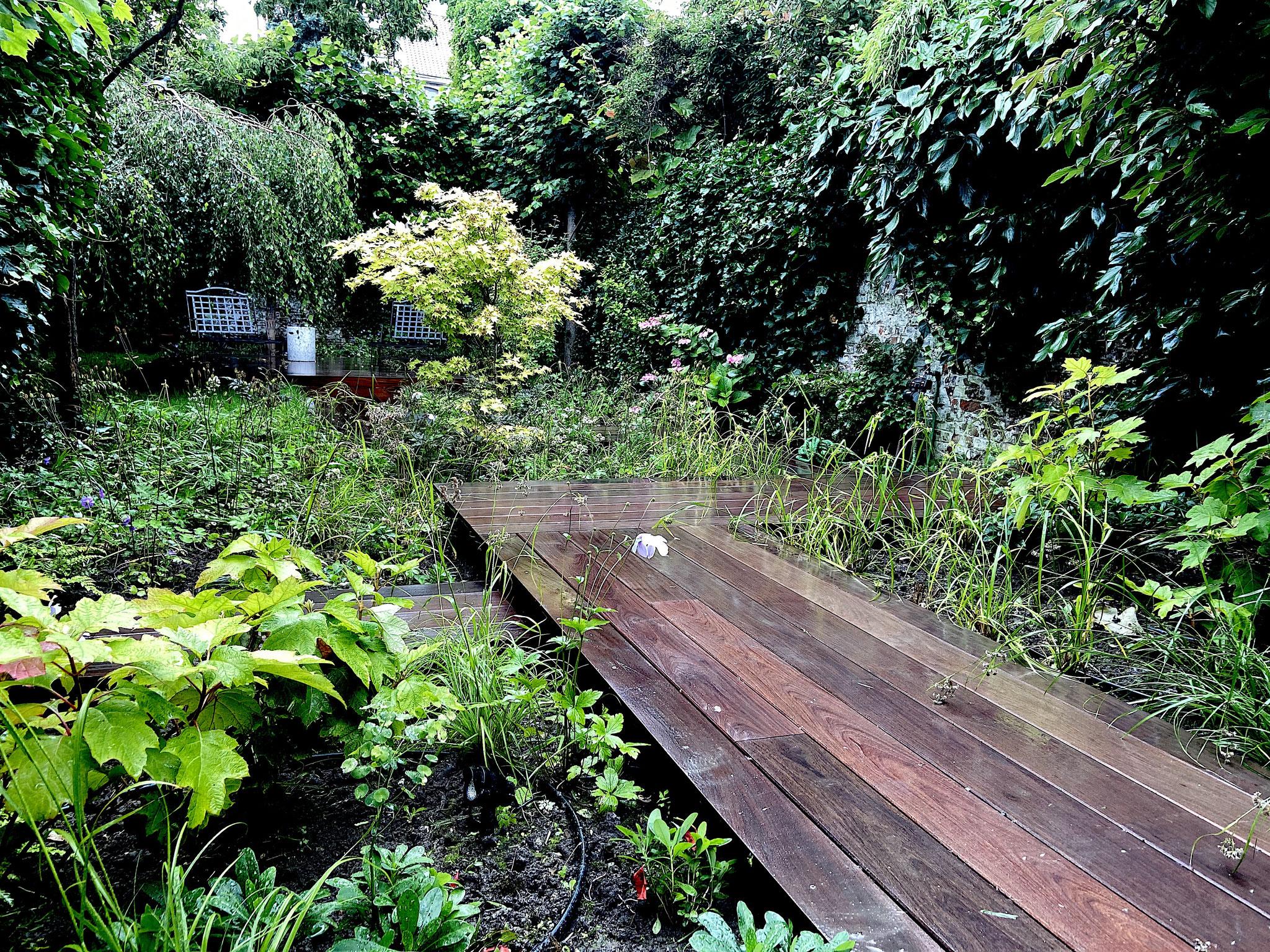 """Jardin de ville 250m2 - Jardin contemporain -Passerelle en bois / Ambiance """"Sous-Bois"""". Aménagement Jardin Bruxelles"""