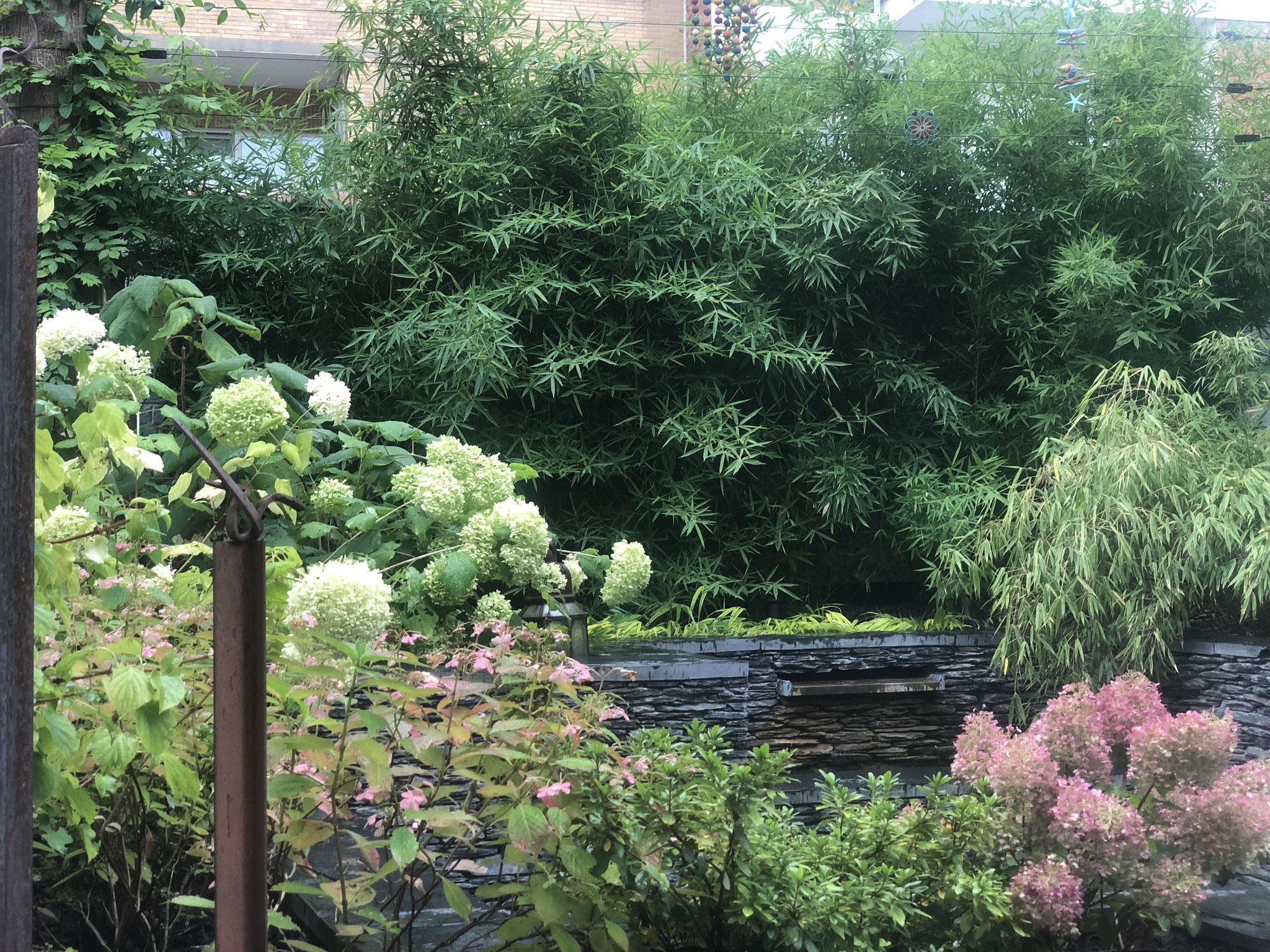 Cour sur 4 niveaux - Niveau bas / +2ans - Fontaine en pierres sèches de schiste - Amenagement jardin Bruxelles