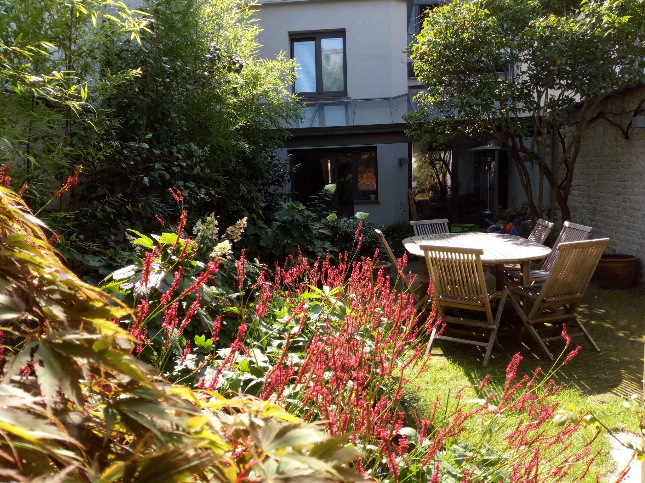 Jardin de ville 120m2 - Jardin de chambres - La terrasse d'été/ Eté 2017. Amenagement jardin Bruxelles