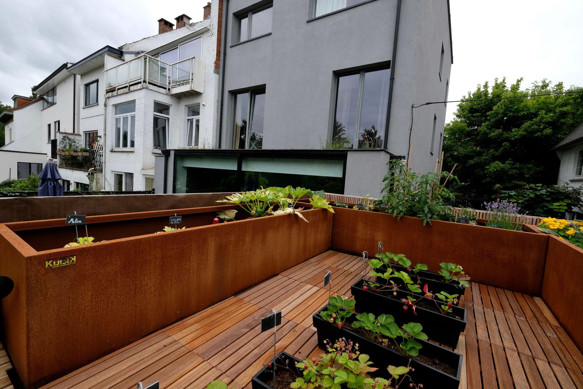 Jardin de ville 150m2 - Jardin contemporain - Potager sur le toit du garage. Aménagement jardin Bruxelles