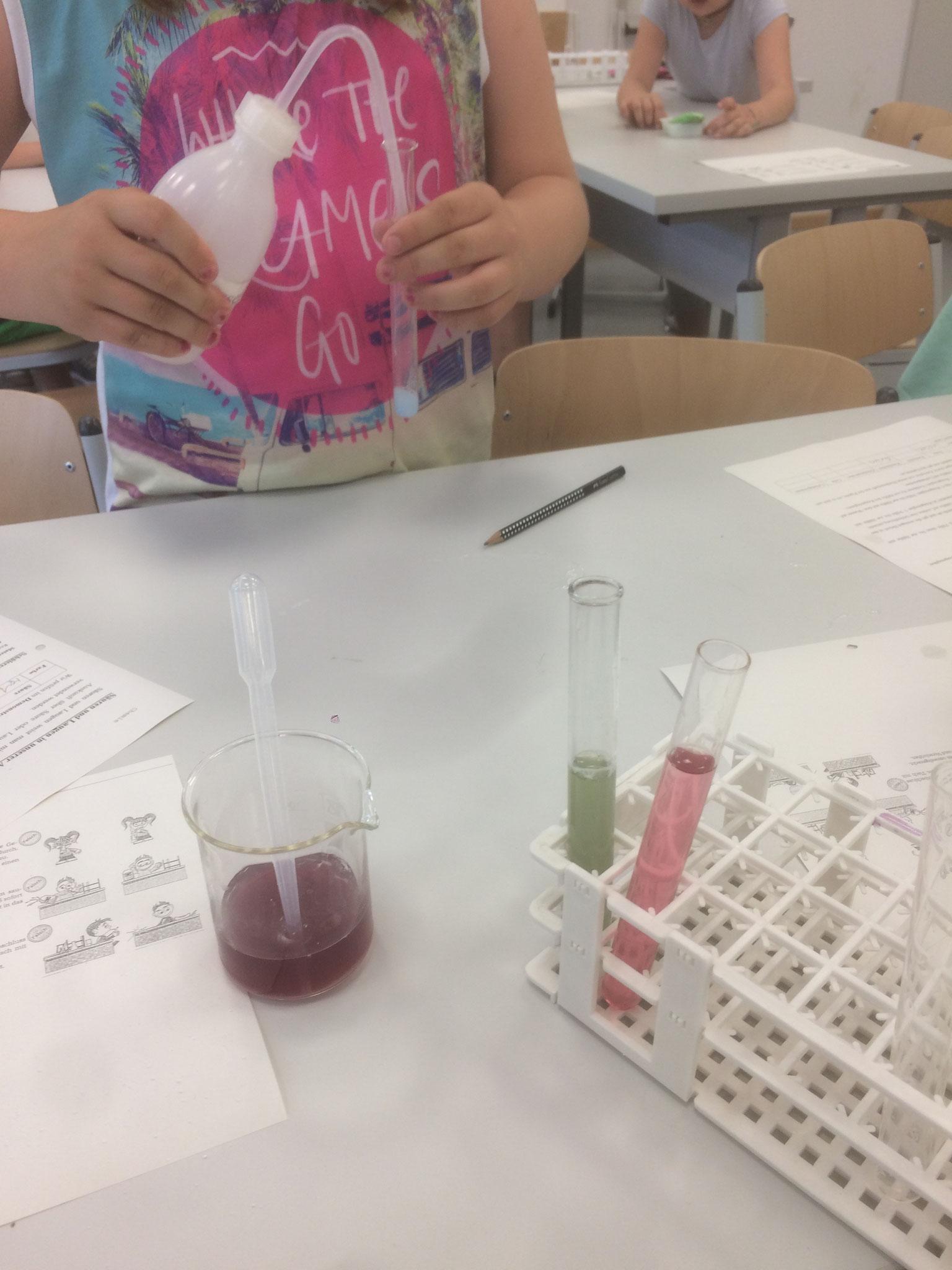 In Reagenzgläschen wurden verschiedene Flüssigkeiten und Pulver gefüllt....
