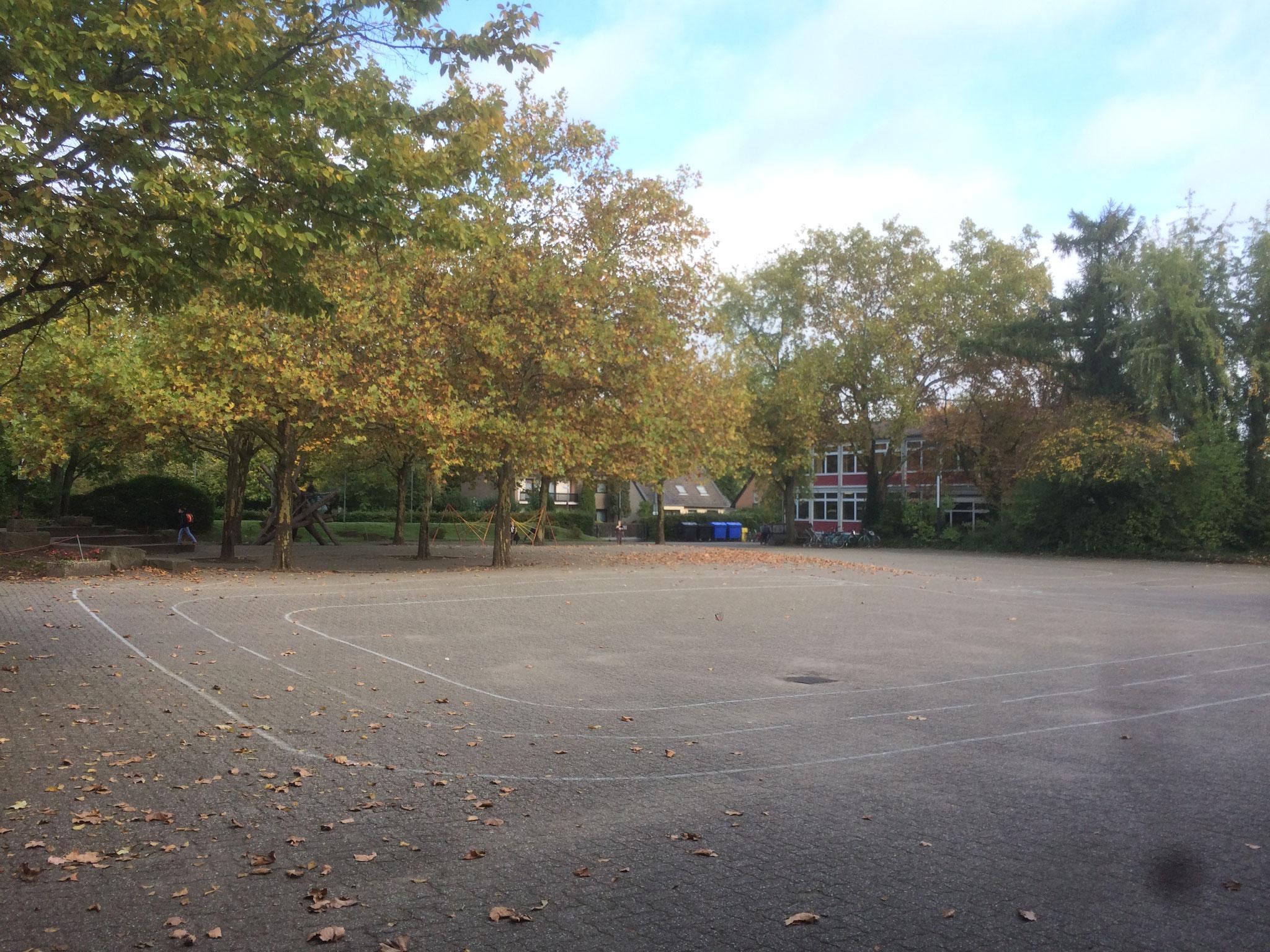... und der Schulhof nur herbstlich geschmückt.