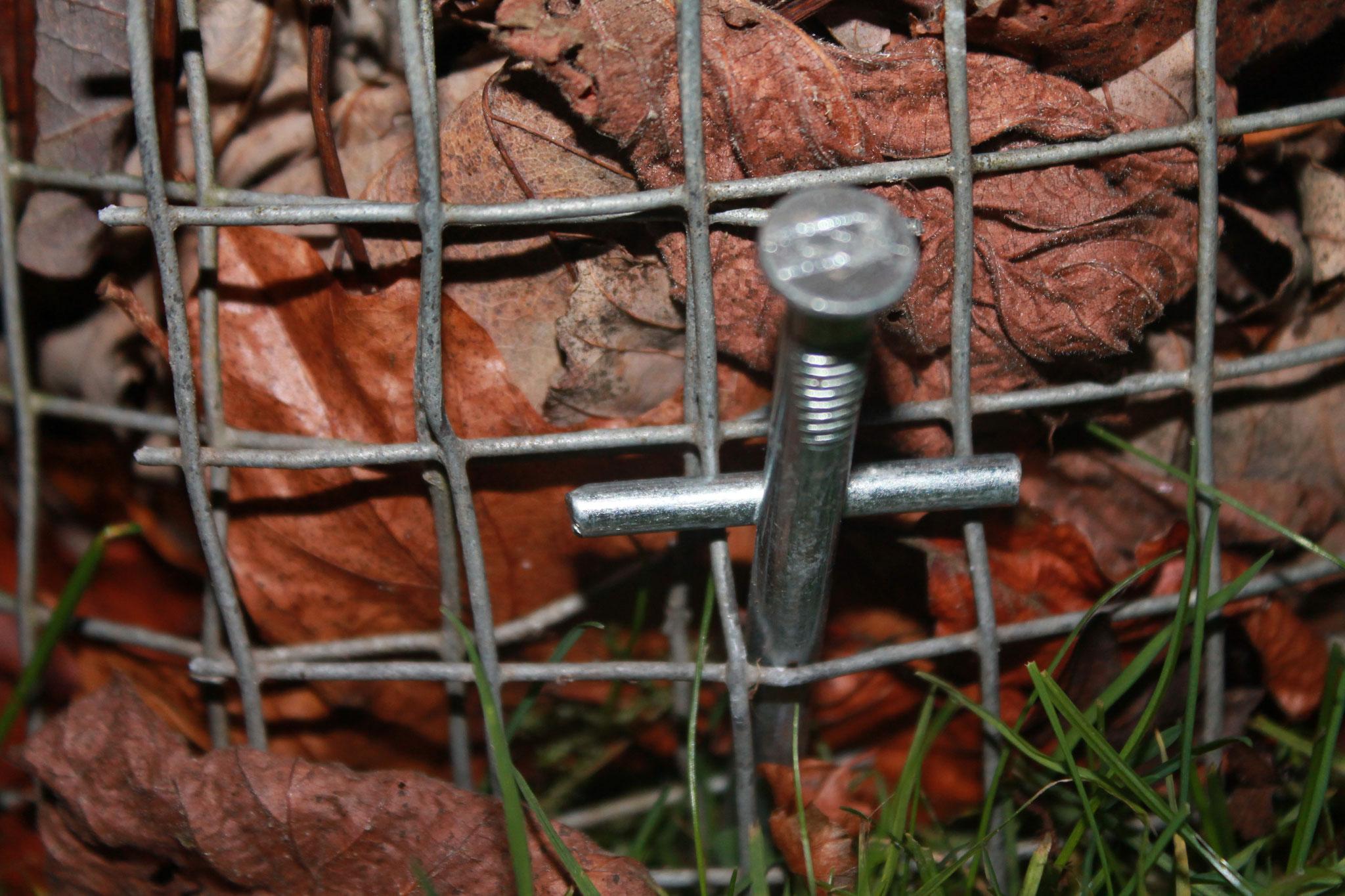 Laubsäule mit Zeltnagel verankert