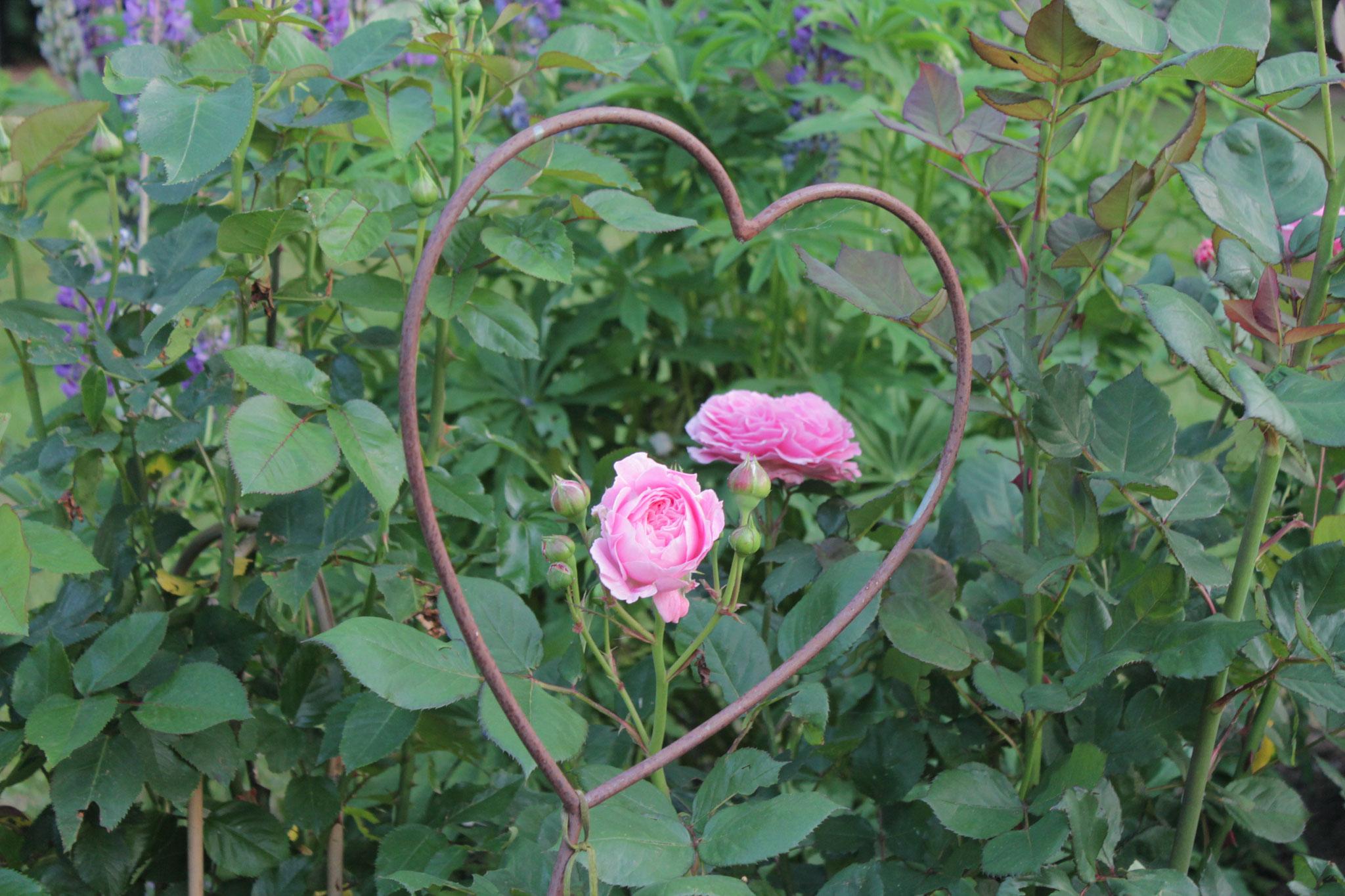 Offener Garten mit Herz