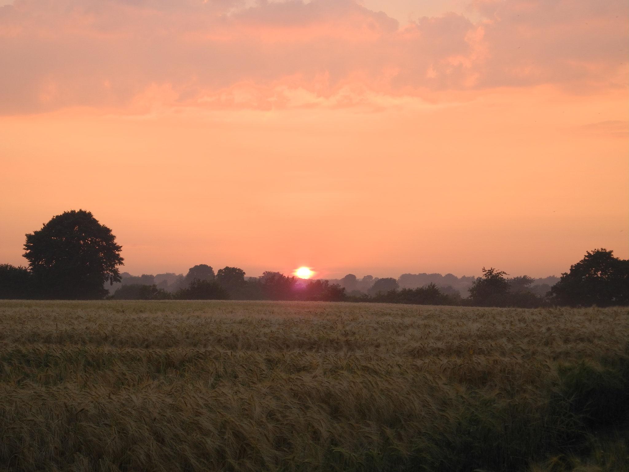 Sonnenuntergang in Ruhnmark