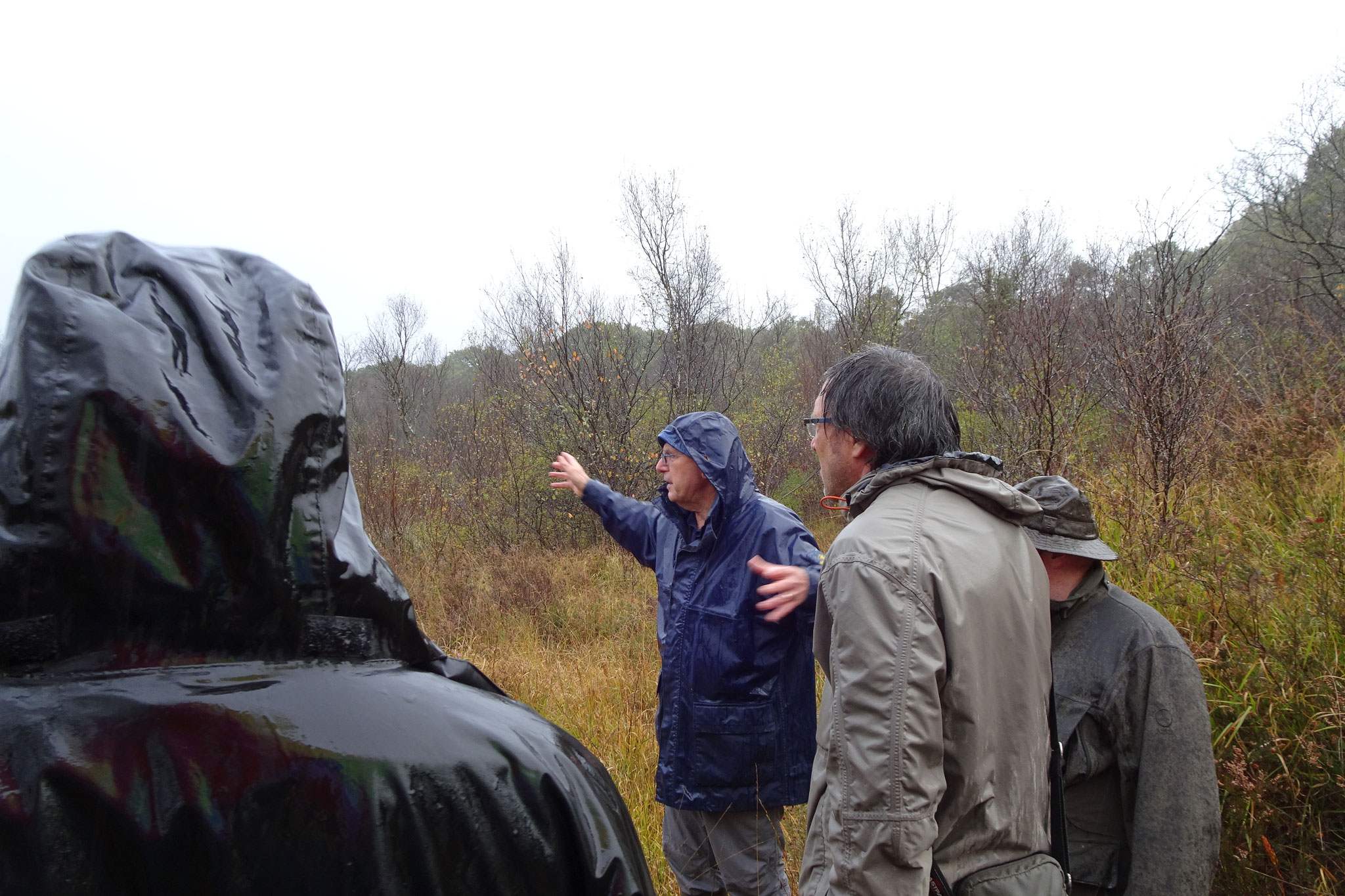 Visite de la tourbière haute active prochainement classée en Réserve Biologique Dirrigée