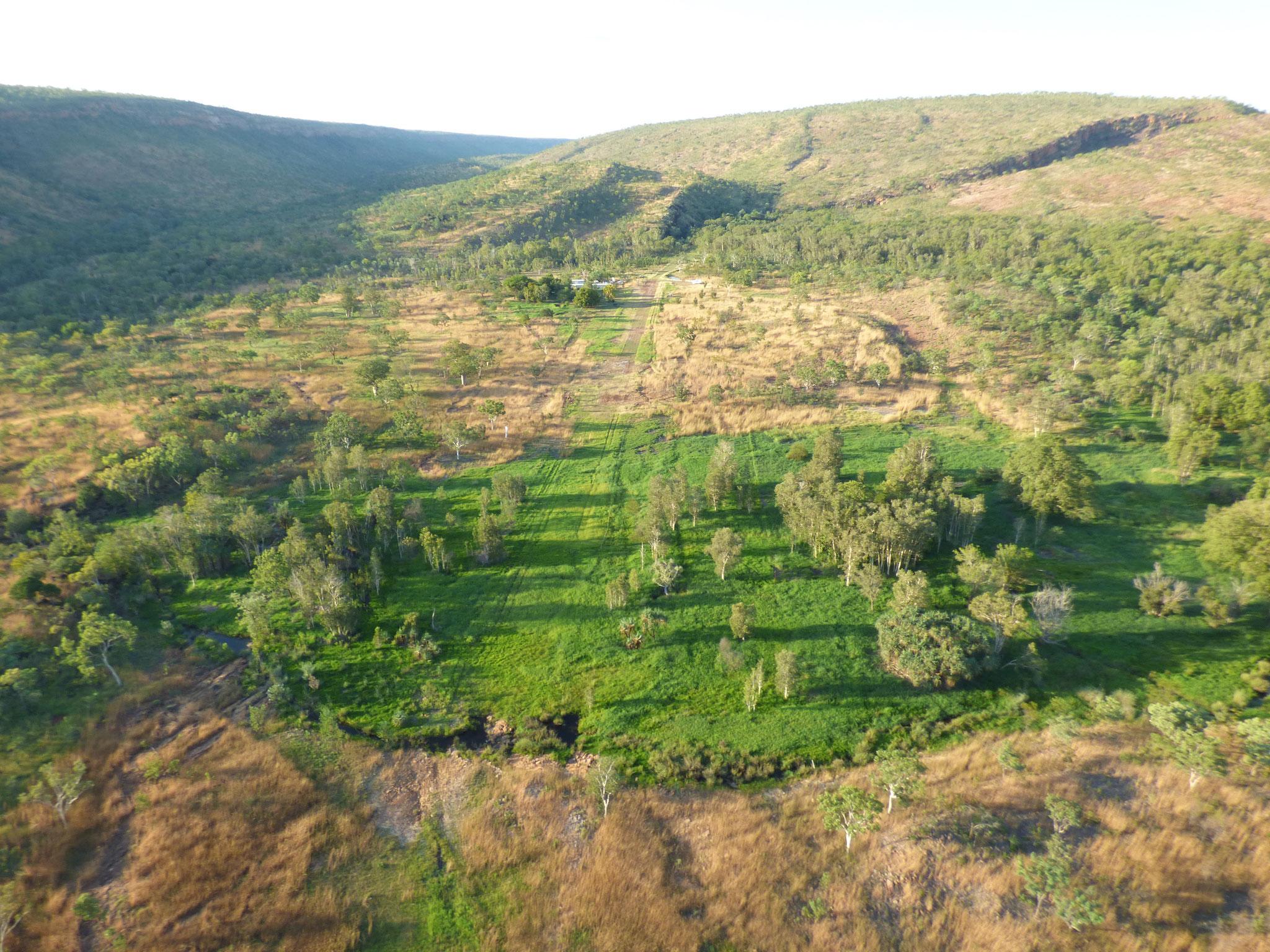 Rebuilding the main Cockatoo Creek carbon-sink has been rewarding work