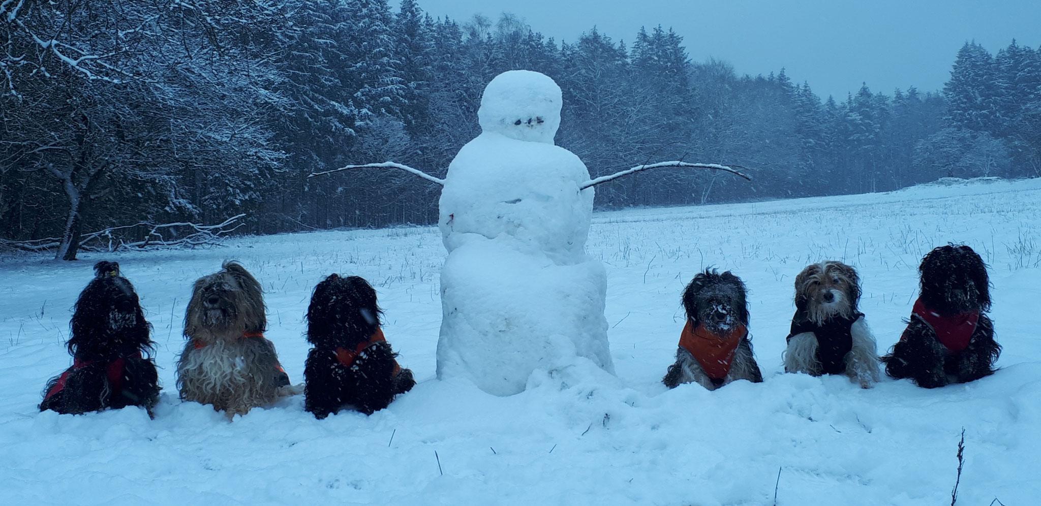 7 Schneemänner :-)