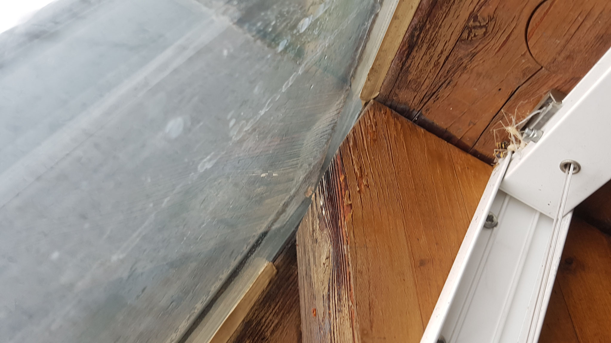 Wasserschaden auf der inneren Holzkonstruktion