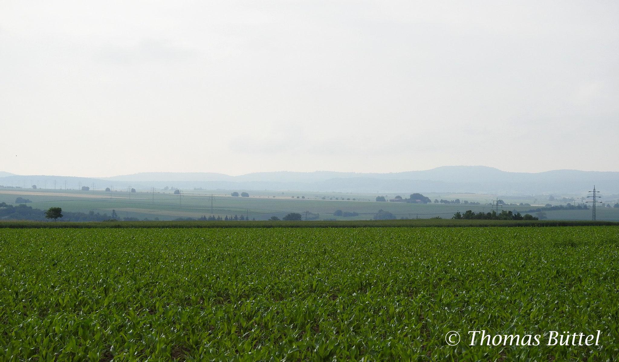 Landschaft bei Willanzheim