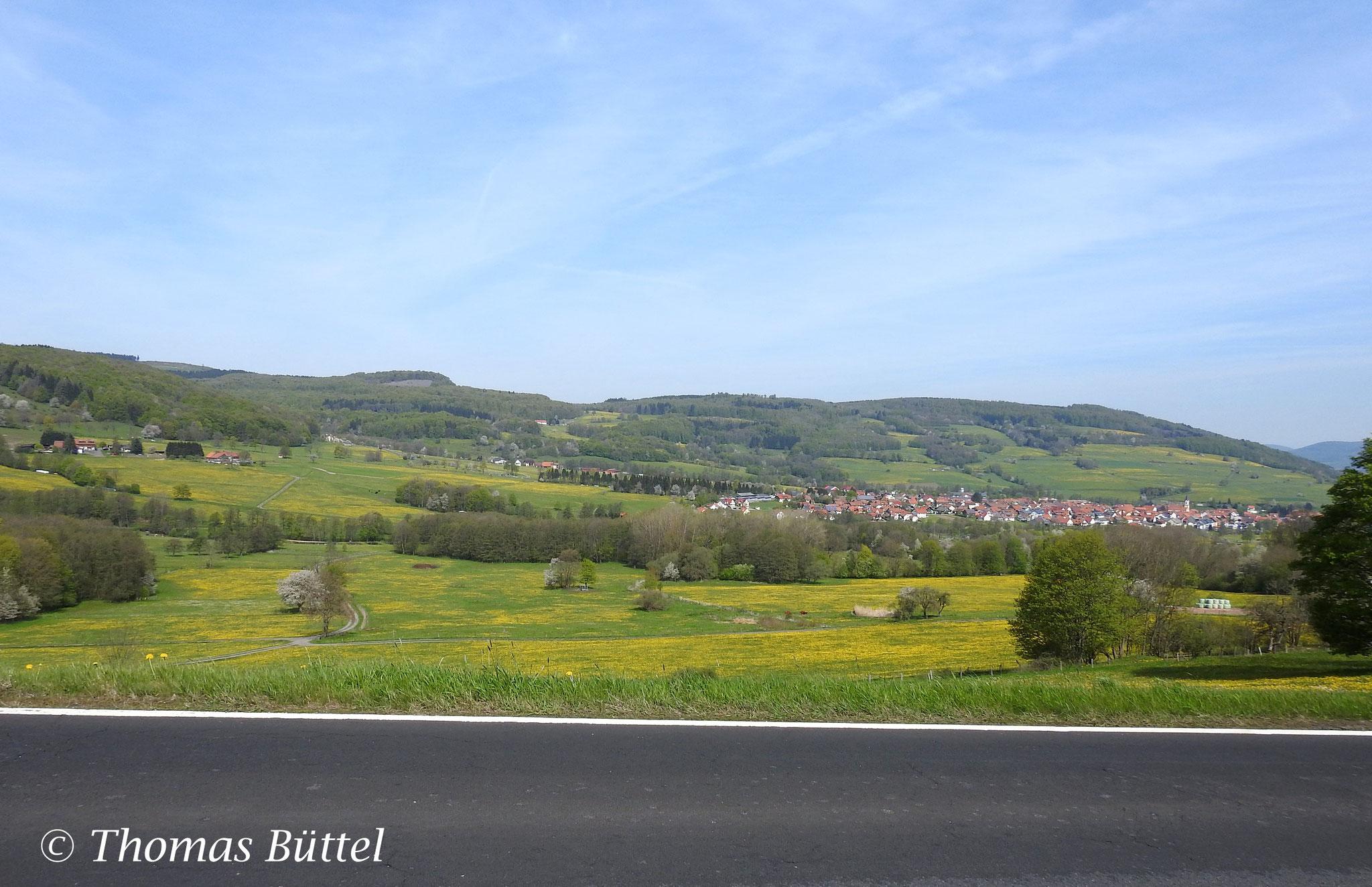 landscape beyond the street
