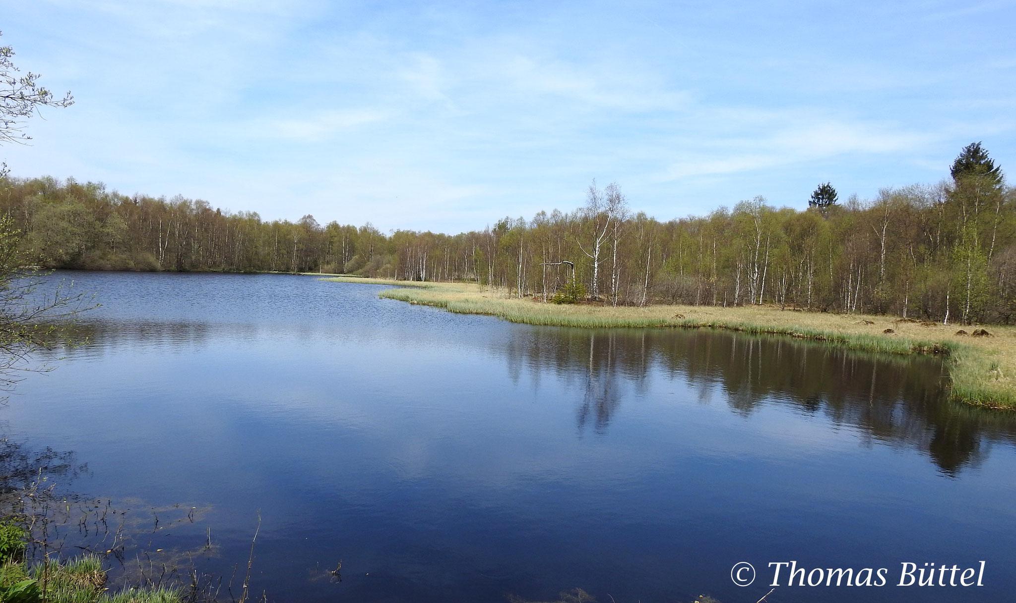 """lake at the """"Rotes Moor"""""""