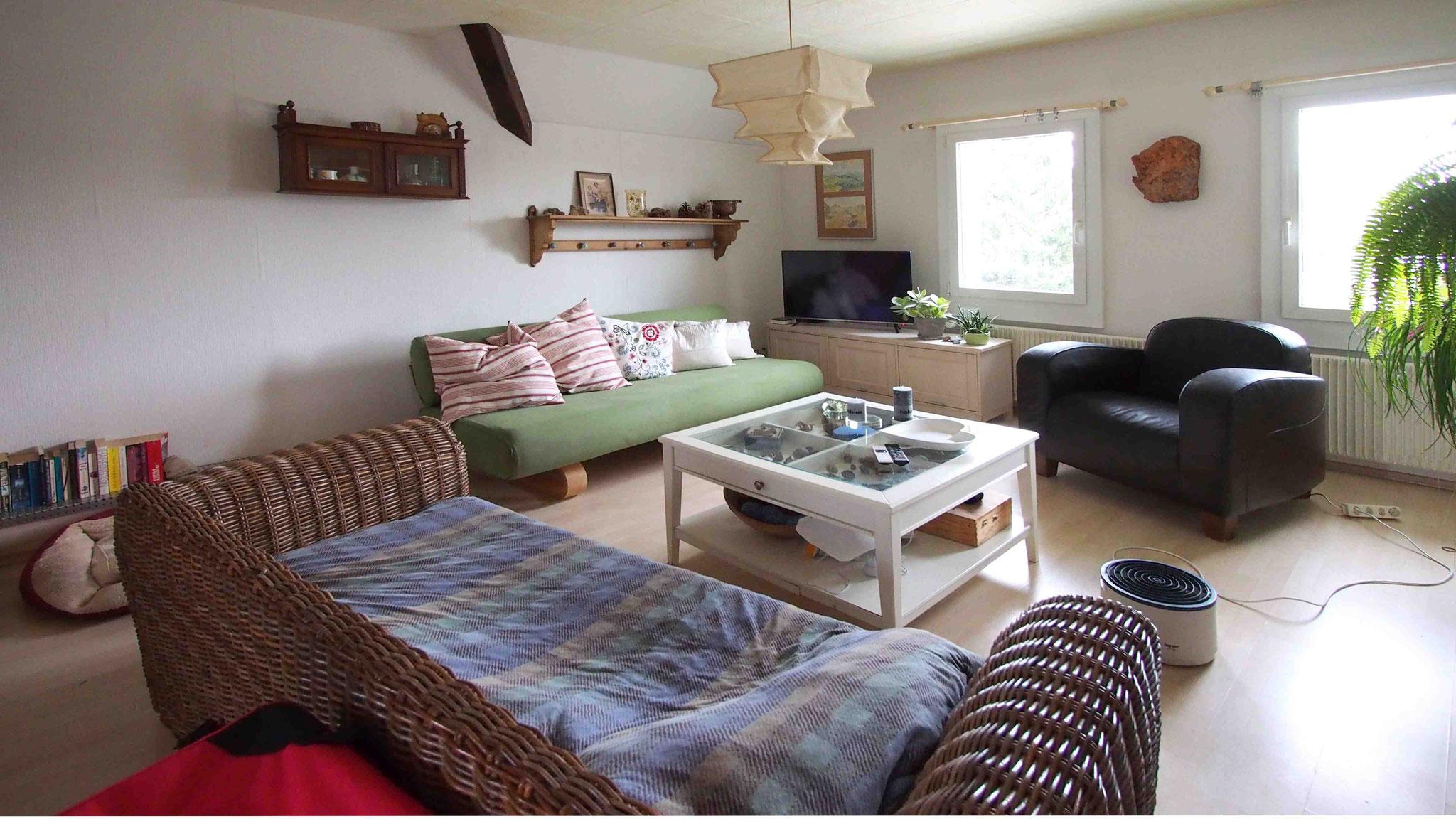 Dachwohnung Wohnzimmer