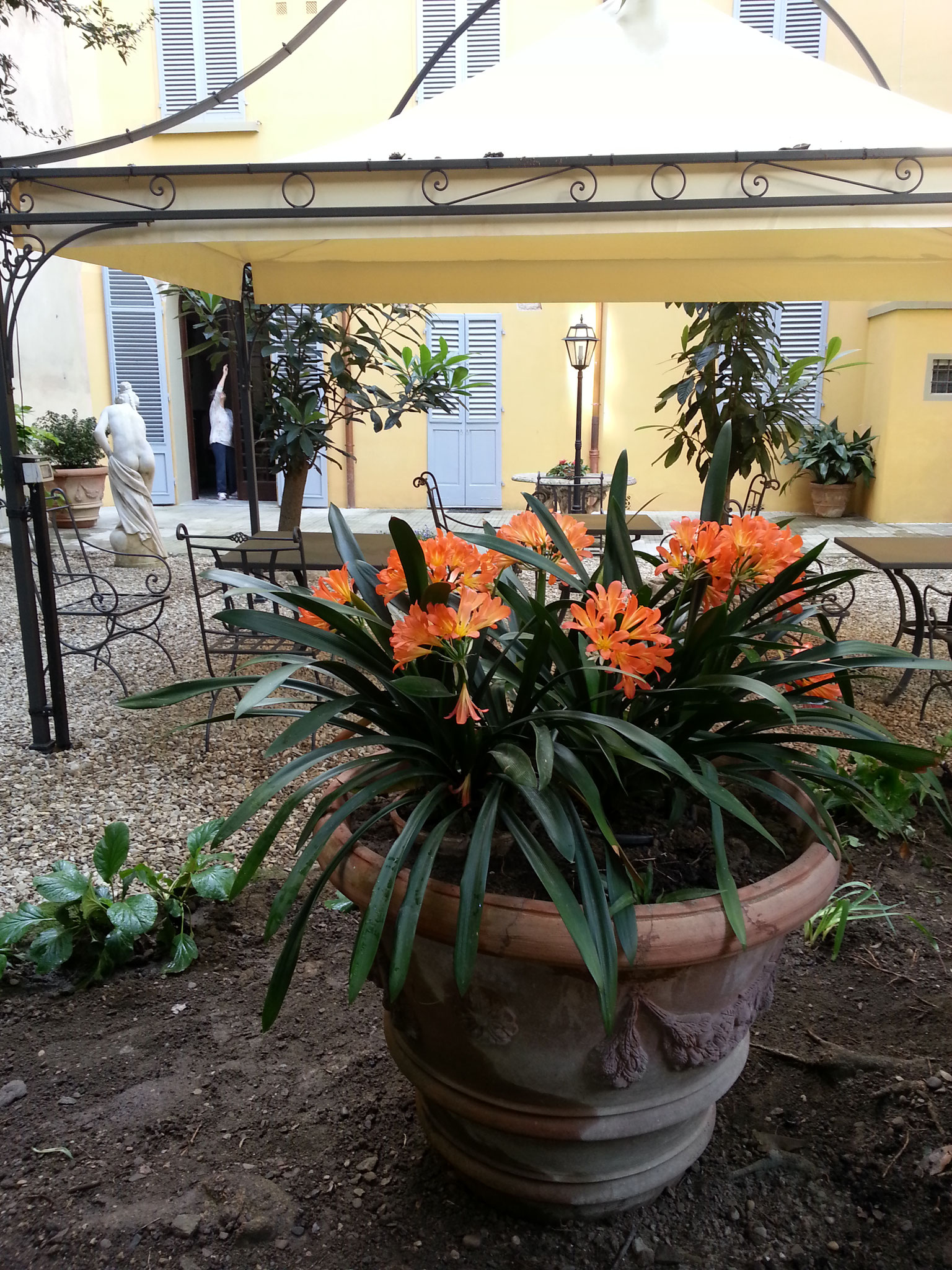Dimora fiorentina soggiorno a firenze little garden for Firenze soggiorno