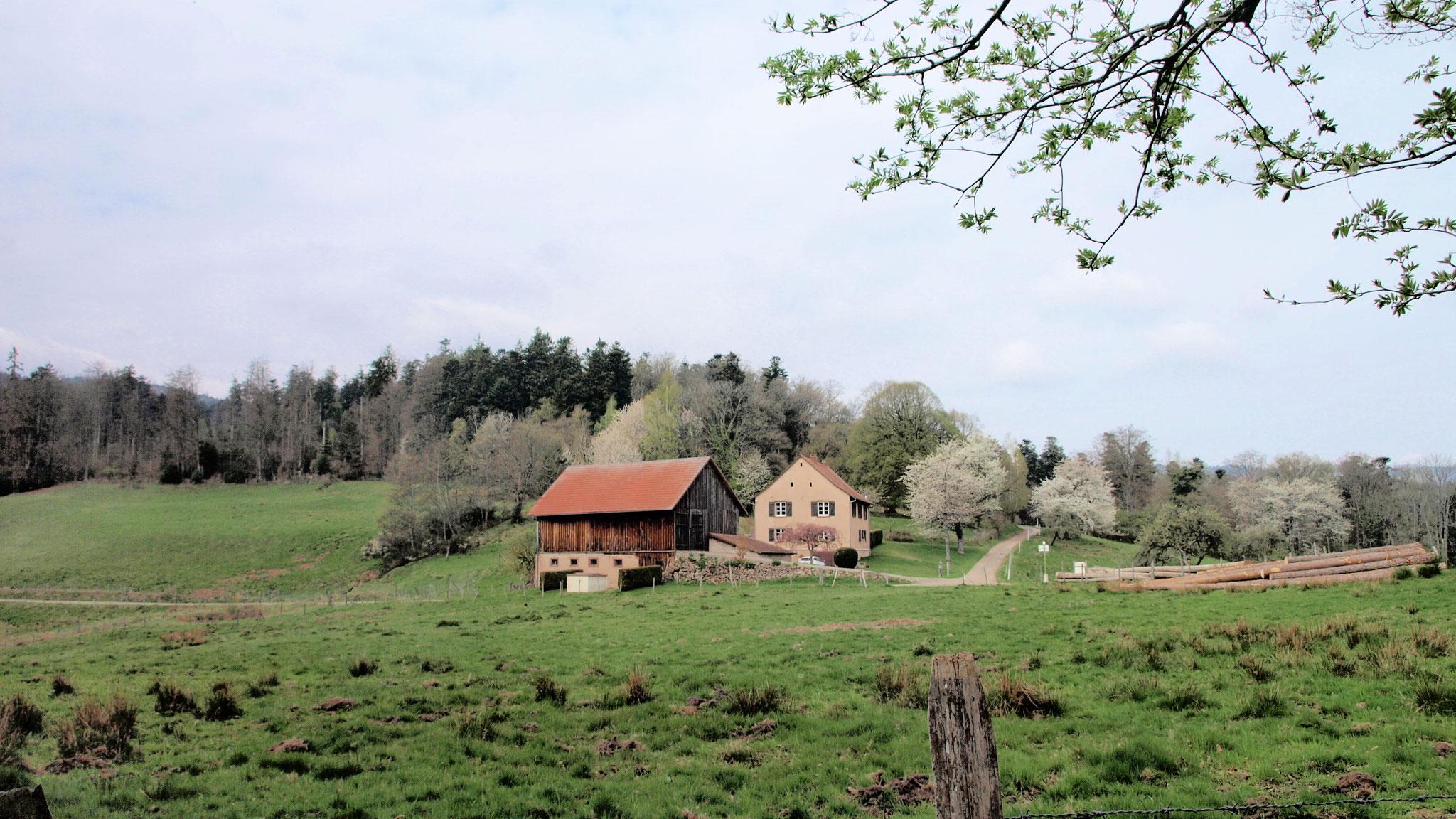 Willerhof