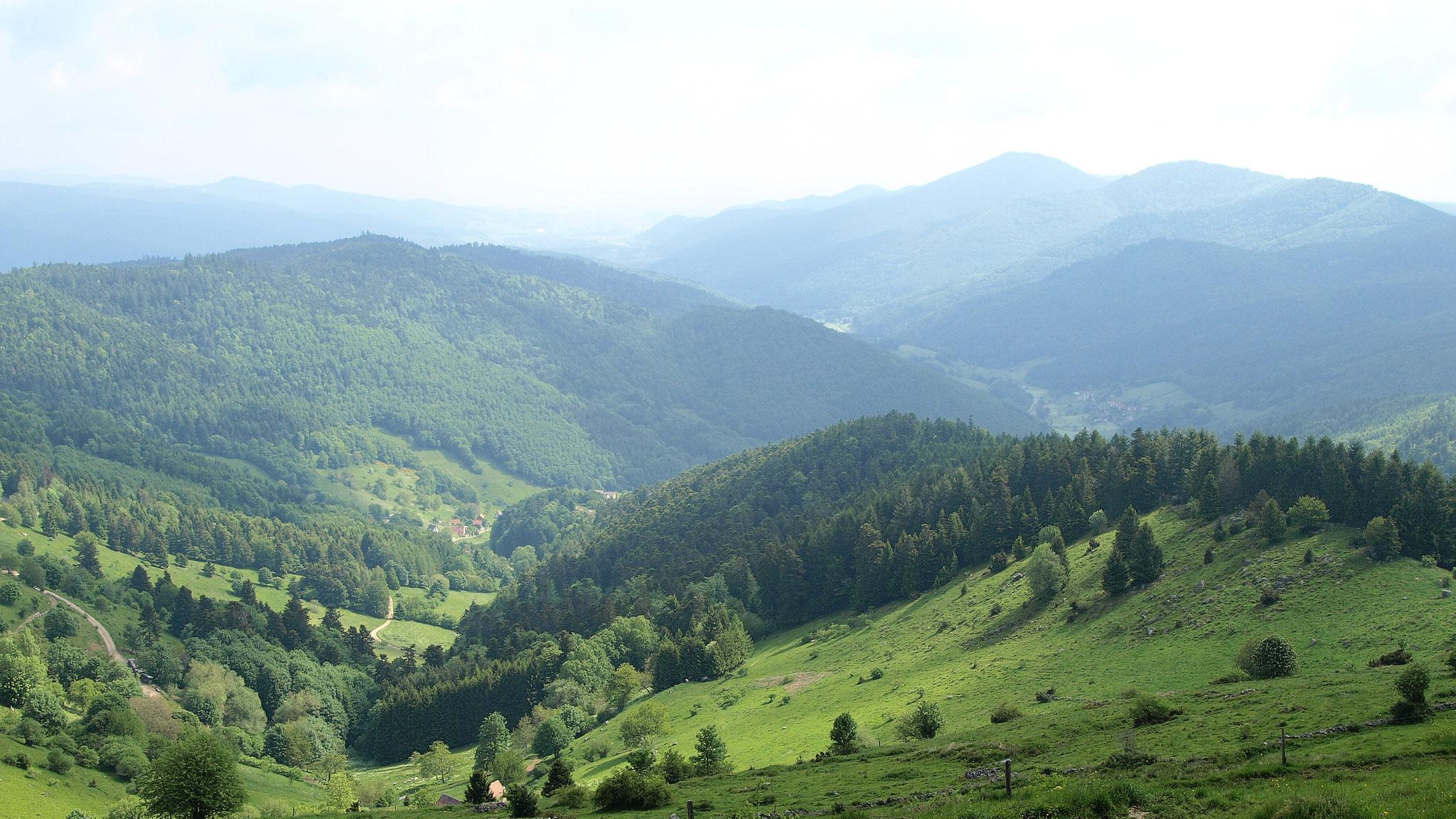 Vallon de Wasserbourg