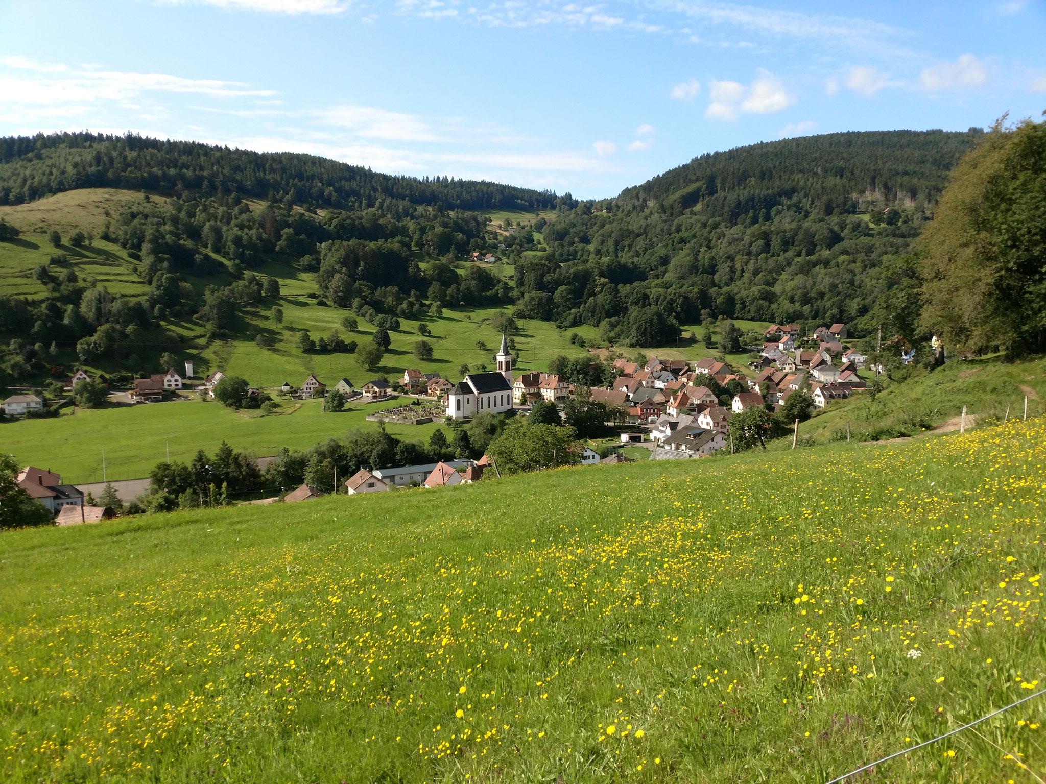 Ampfersbach