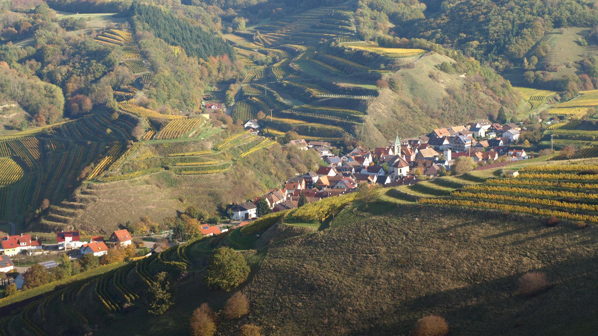 Schelingen