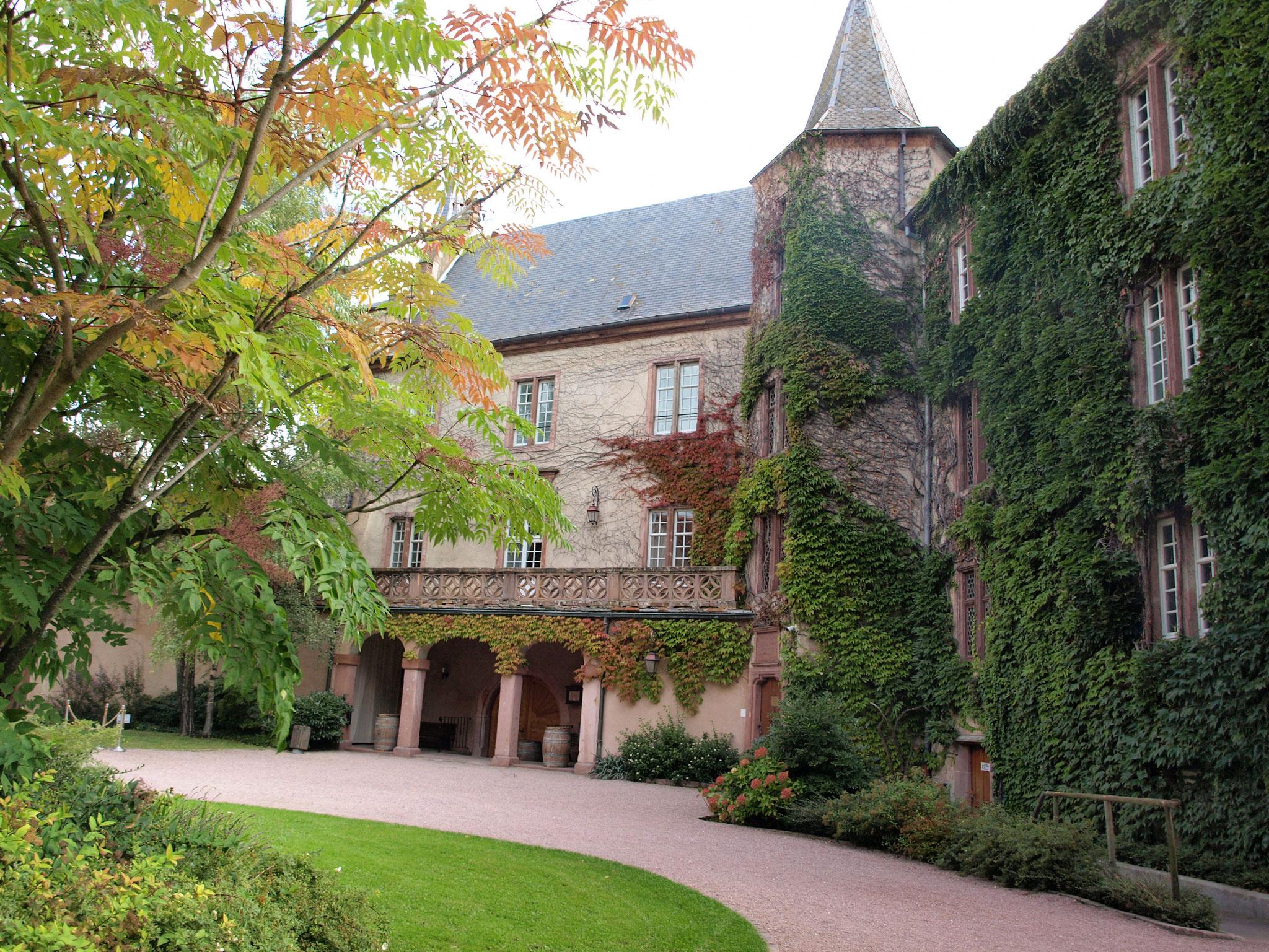 Le château Lupfen Schwendi