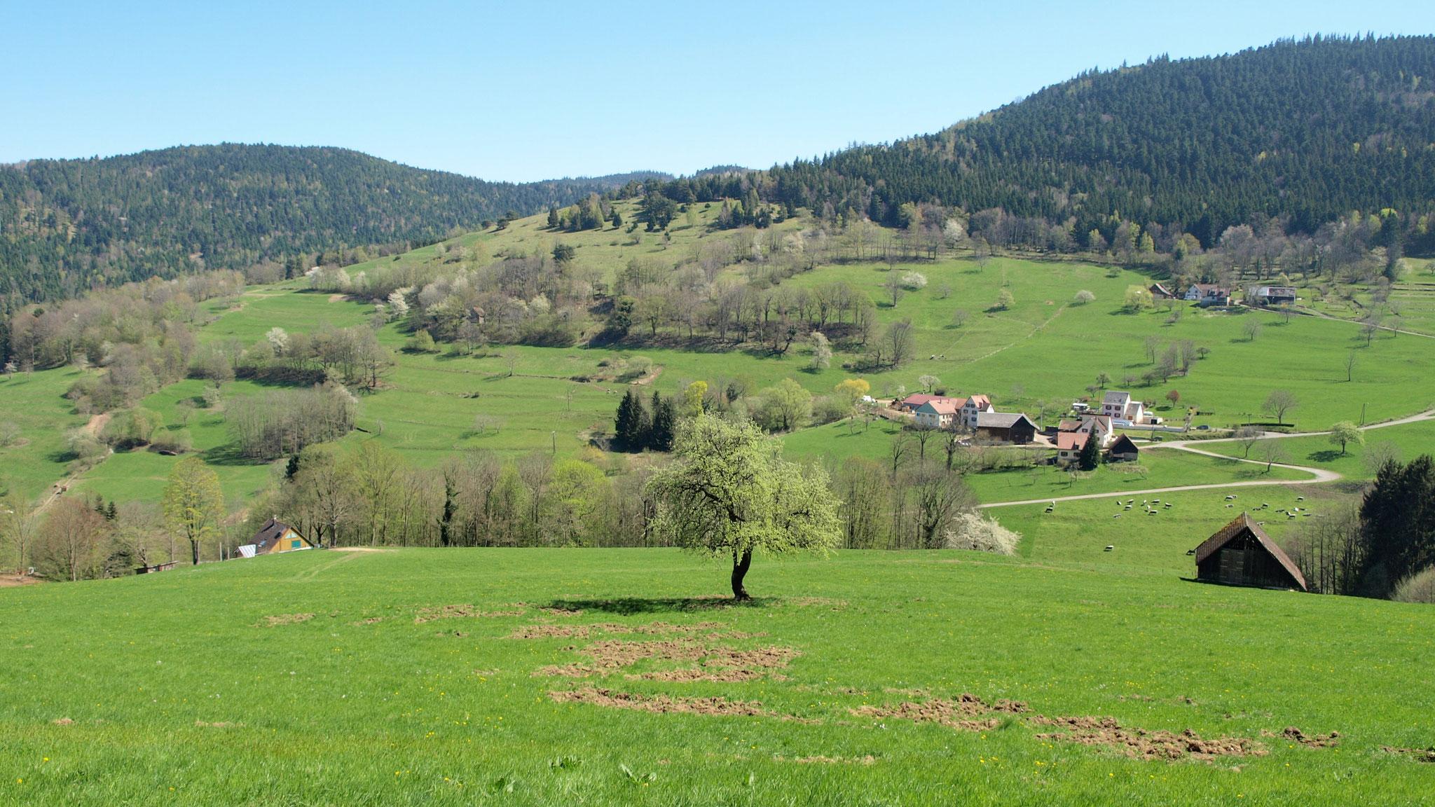 Oberbreitenbach