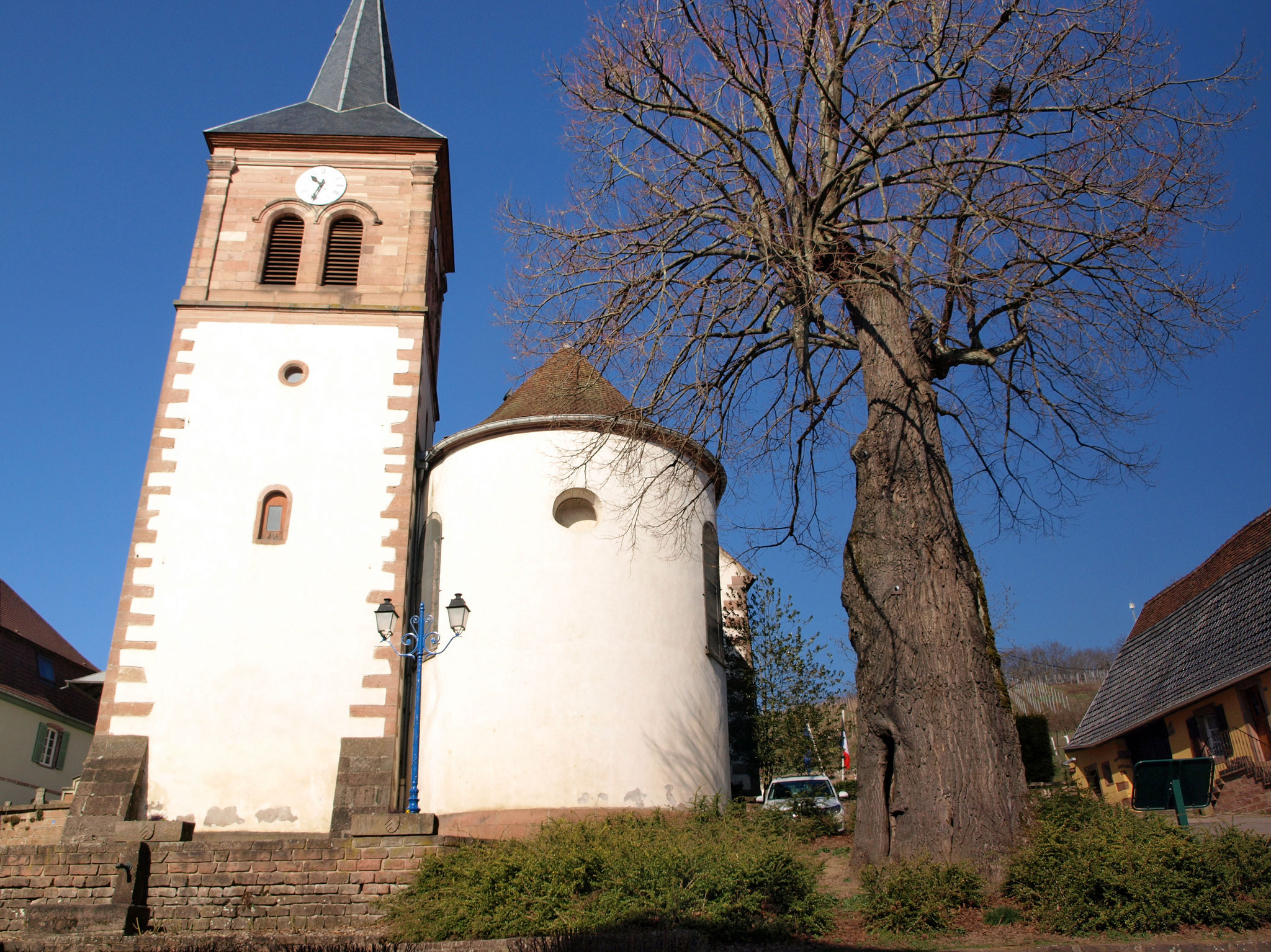 Albé - église et arbre de la Liberté