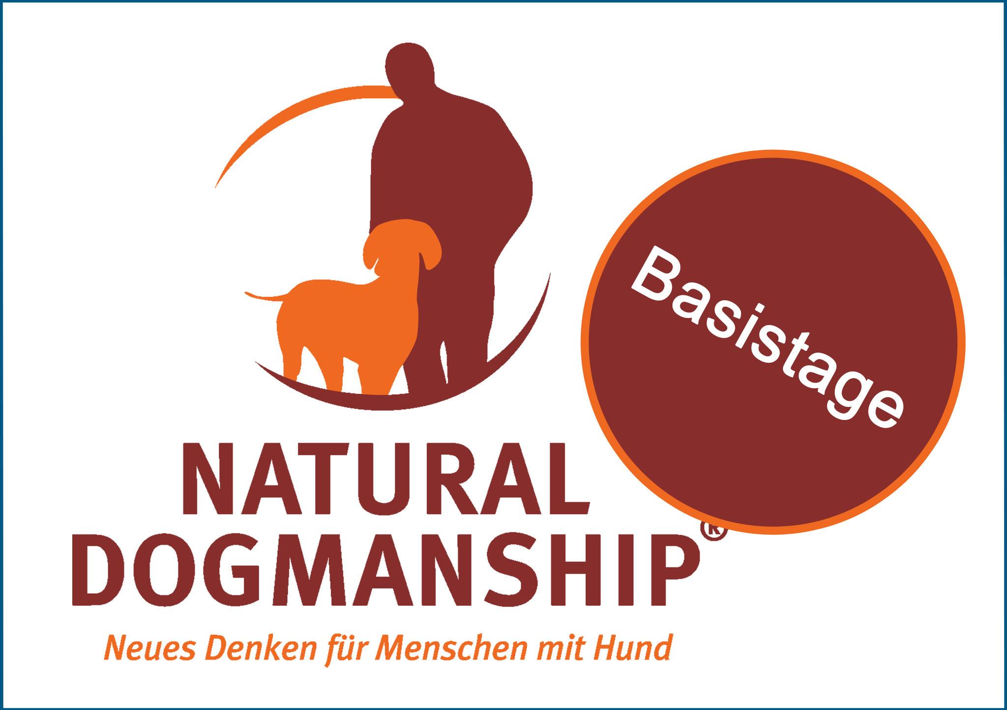 Natural Dogmanship® Basistage