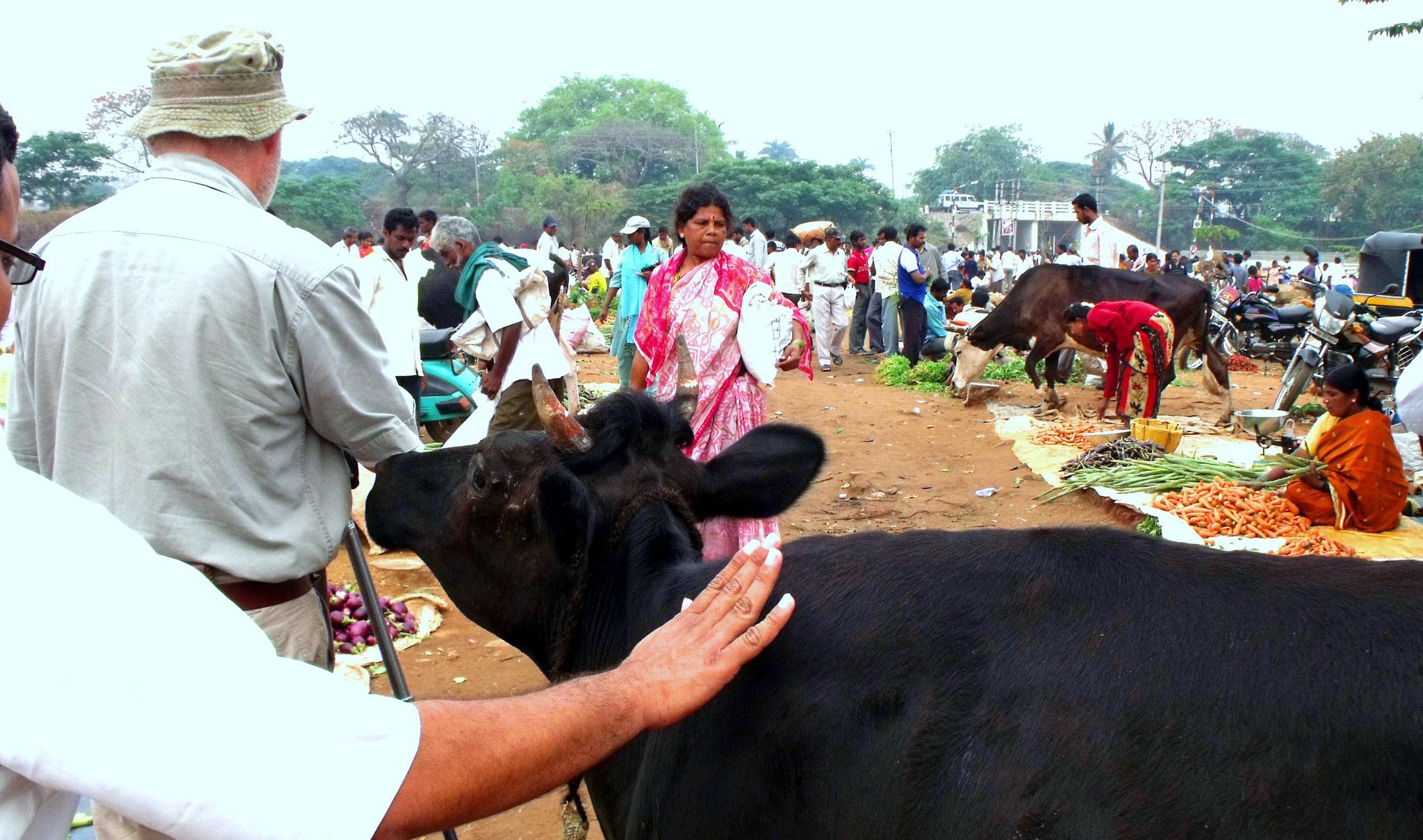 Markt in Indien, Forderung für alle Sinne