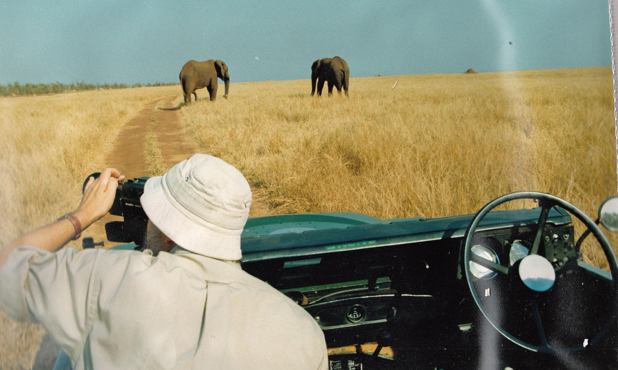 Natur pur in Simbabwe, Hwange