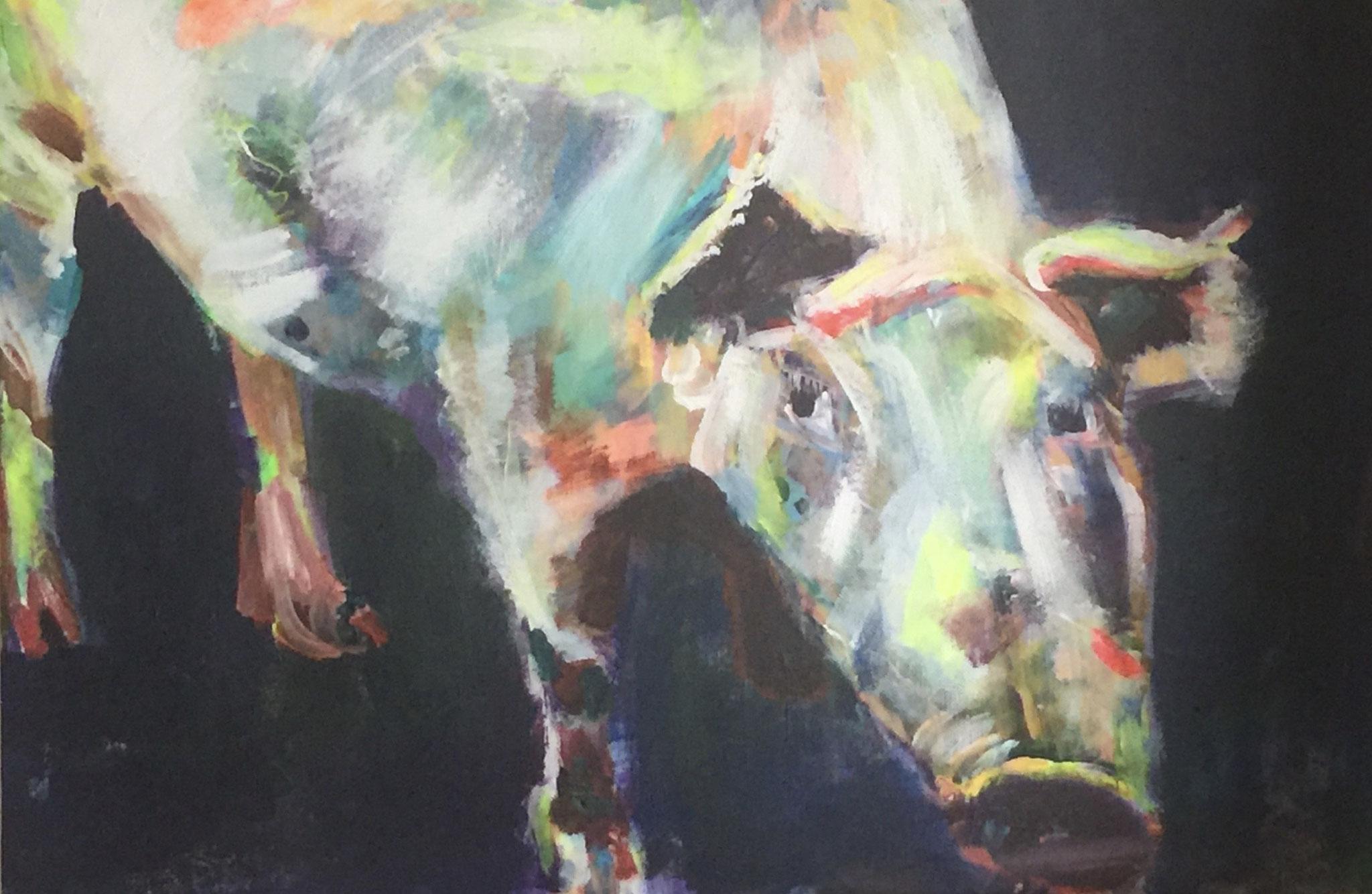 O porco  3,  40x60,  acrylic on canvas
