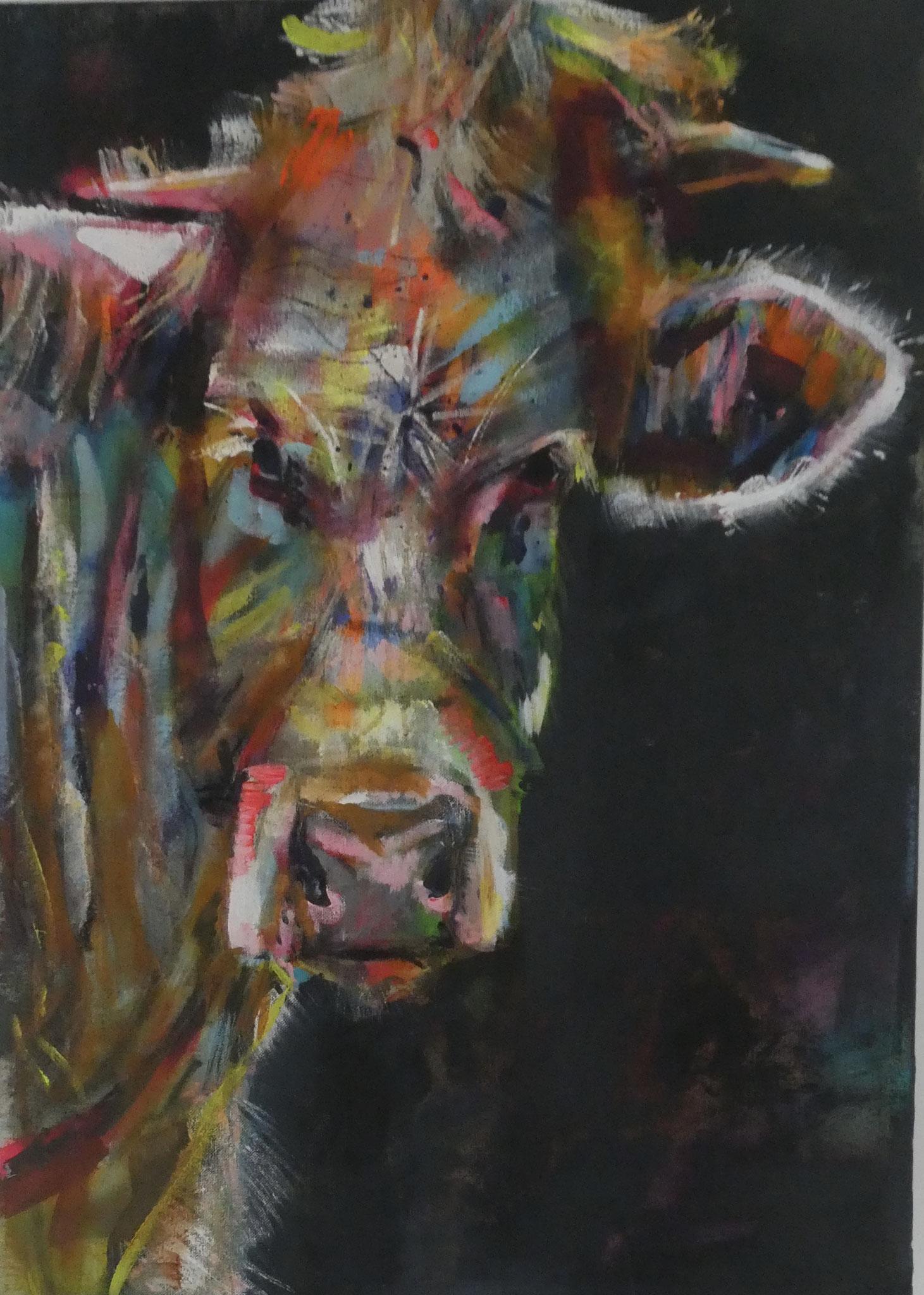 A Vaca 13,  70x50,  acrylic on canvas