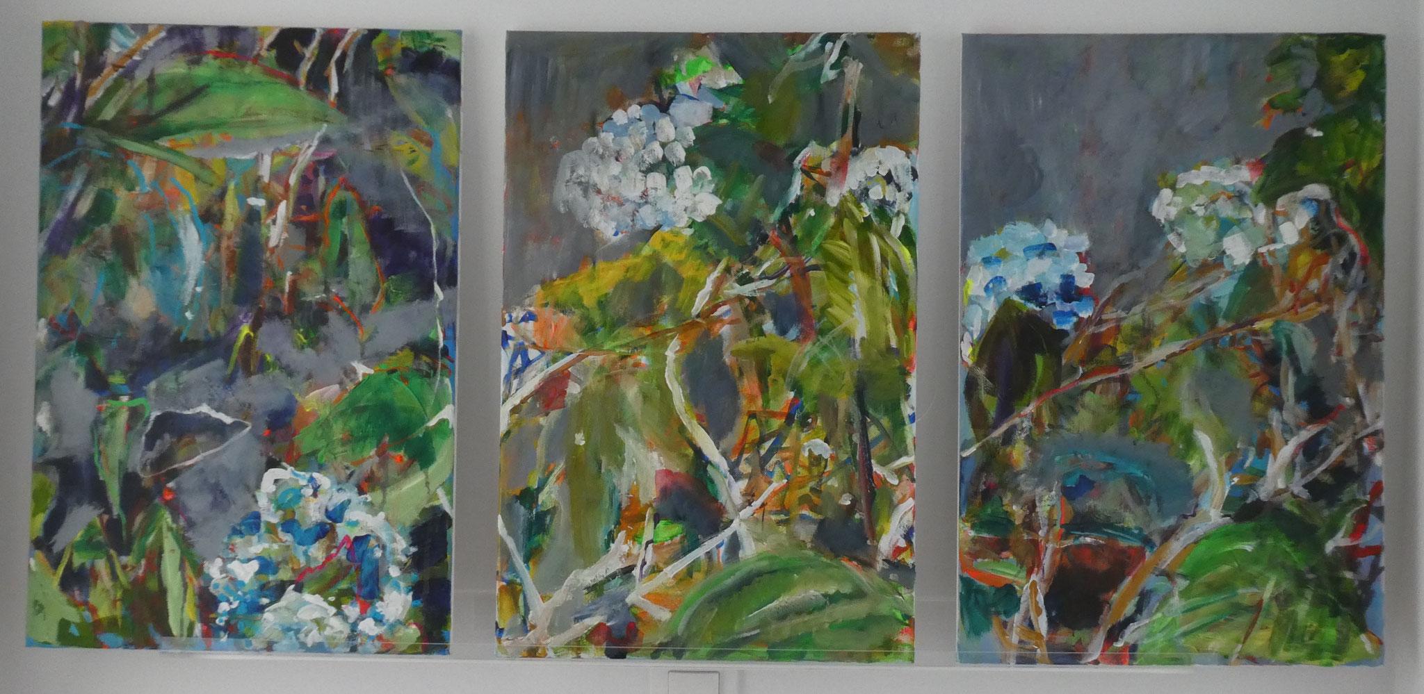 Hortensien 10 und 11 und 12,  60x40,  acrylic on canvas