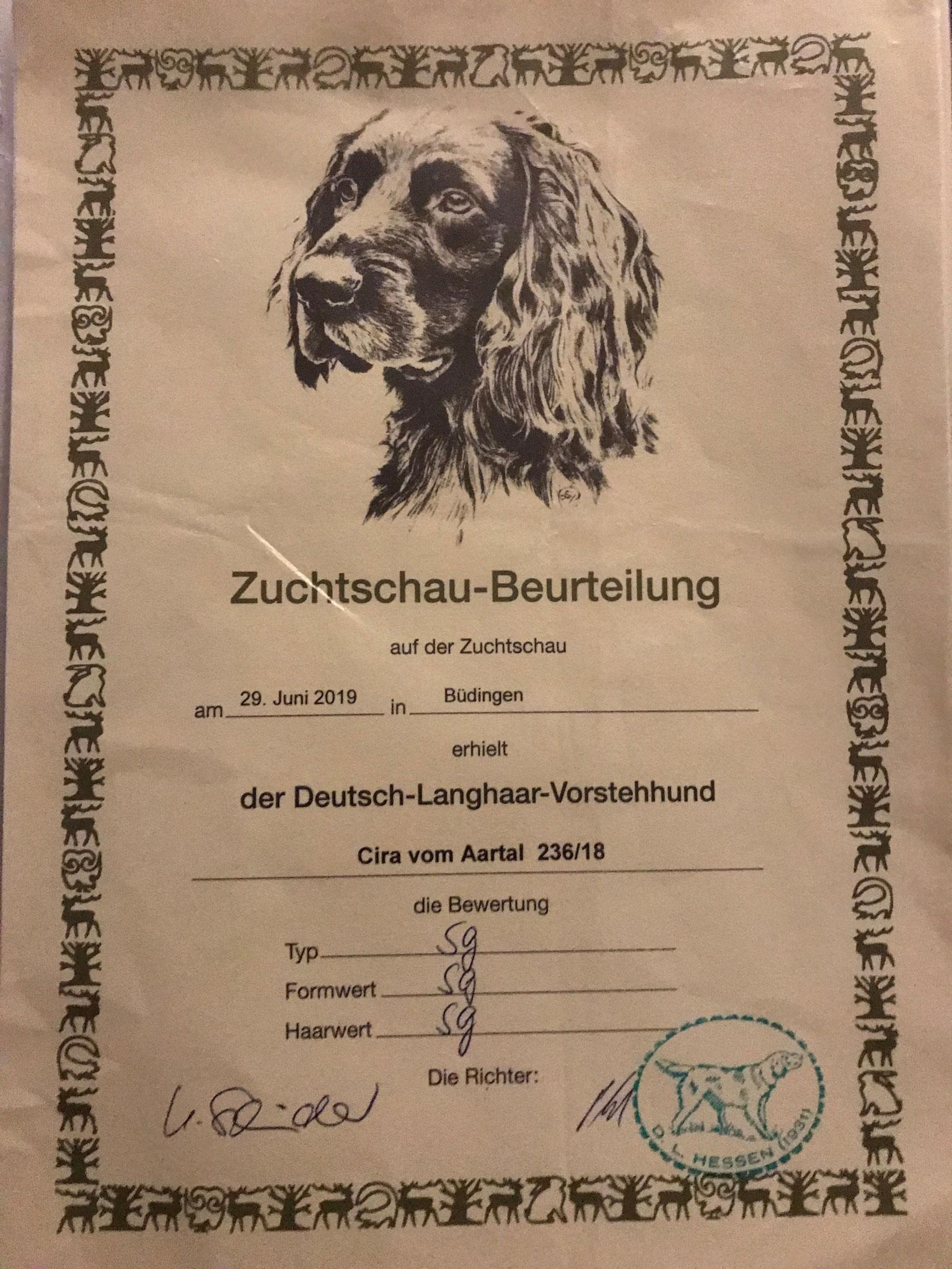 Zuchtschau DL Hessen Jugendklasse