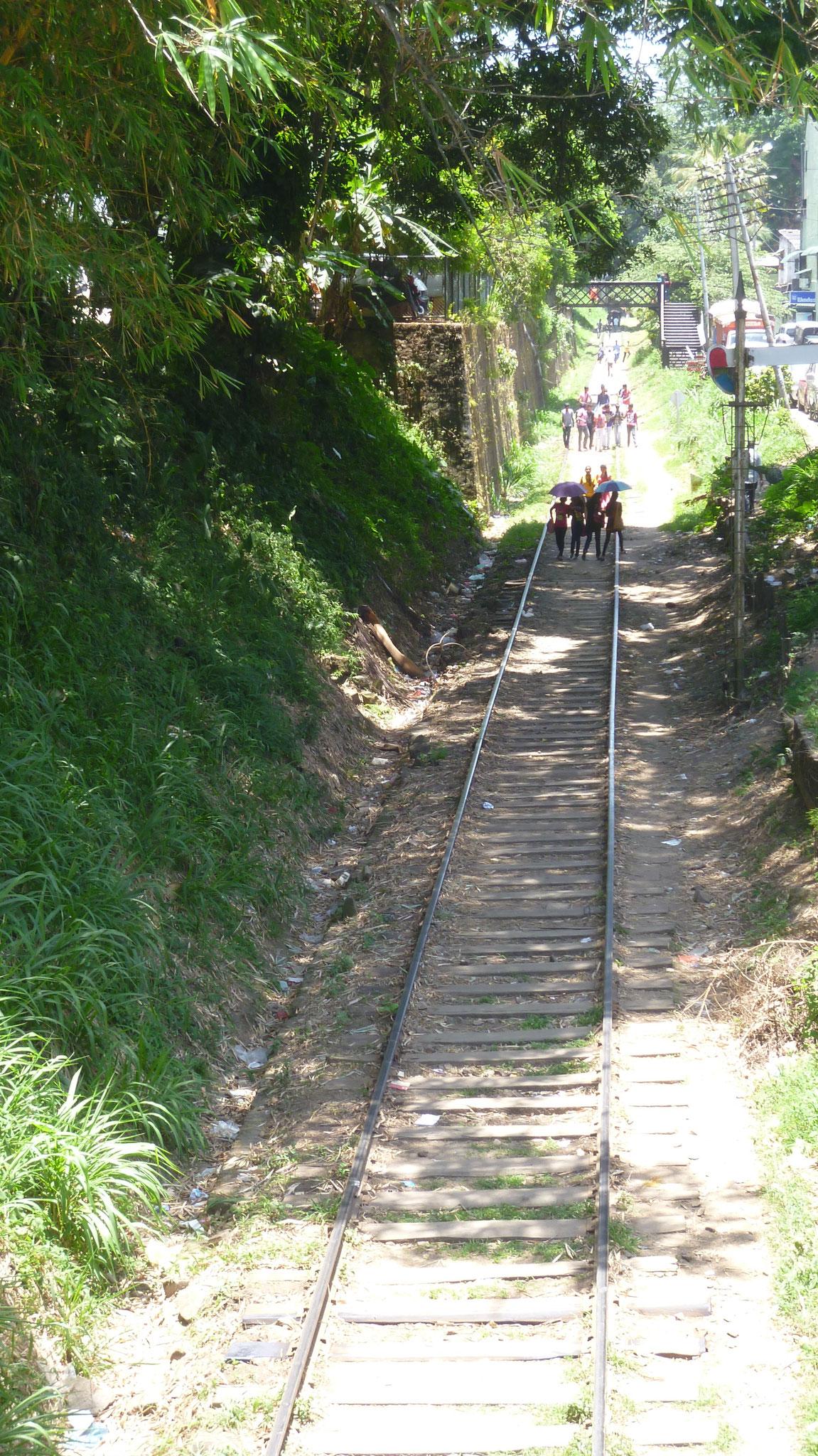 Spaziergänger in Kandy