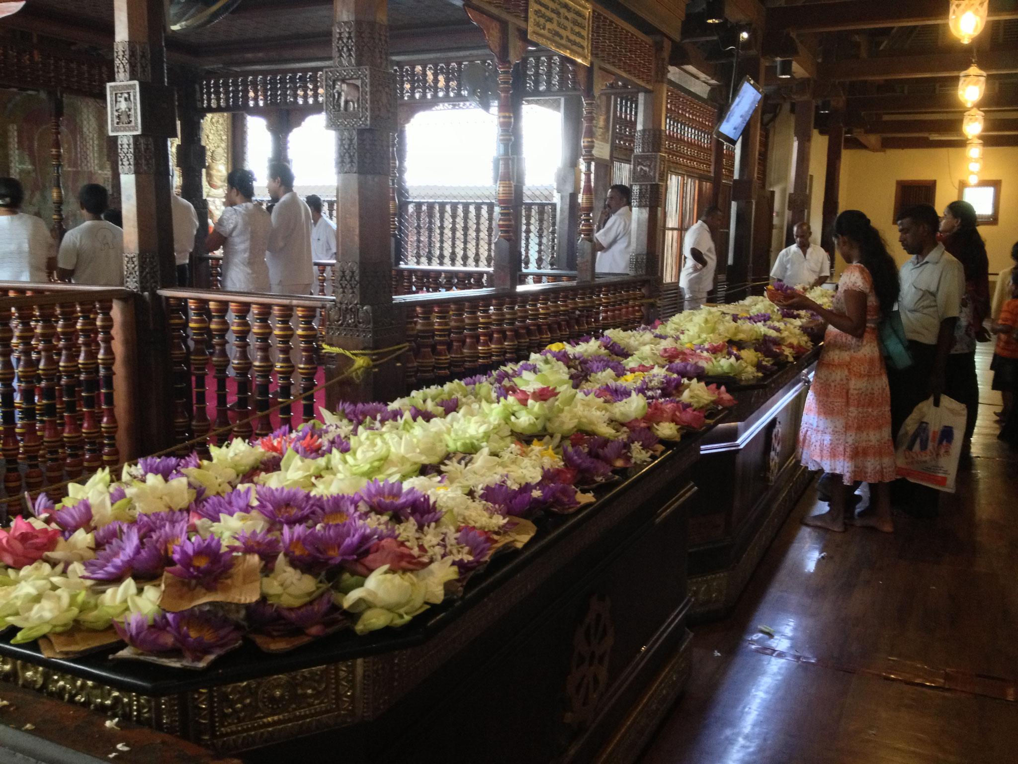 Blumendeko im Zahntempel