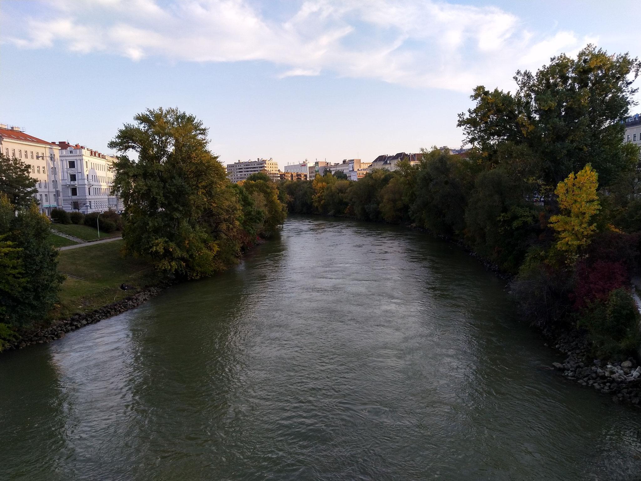 Giro Donaukanal in bici
