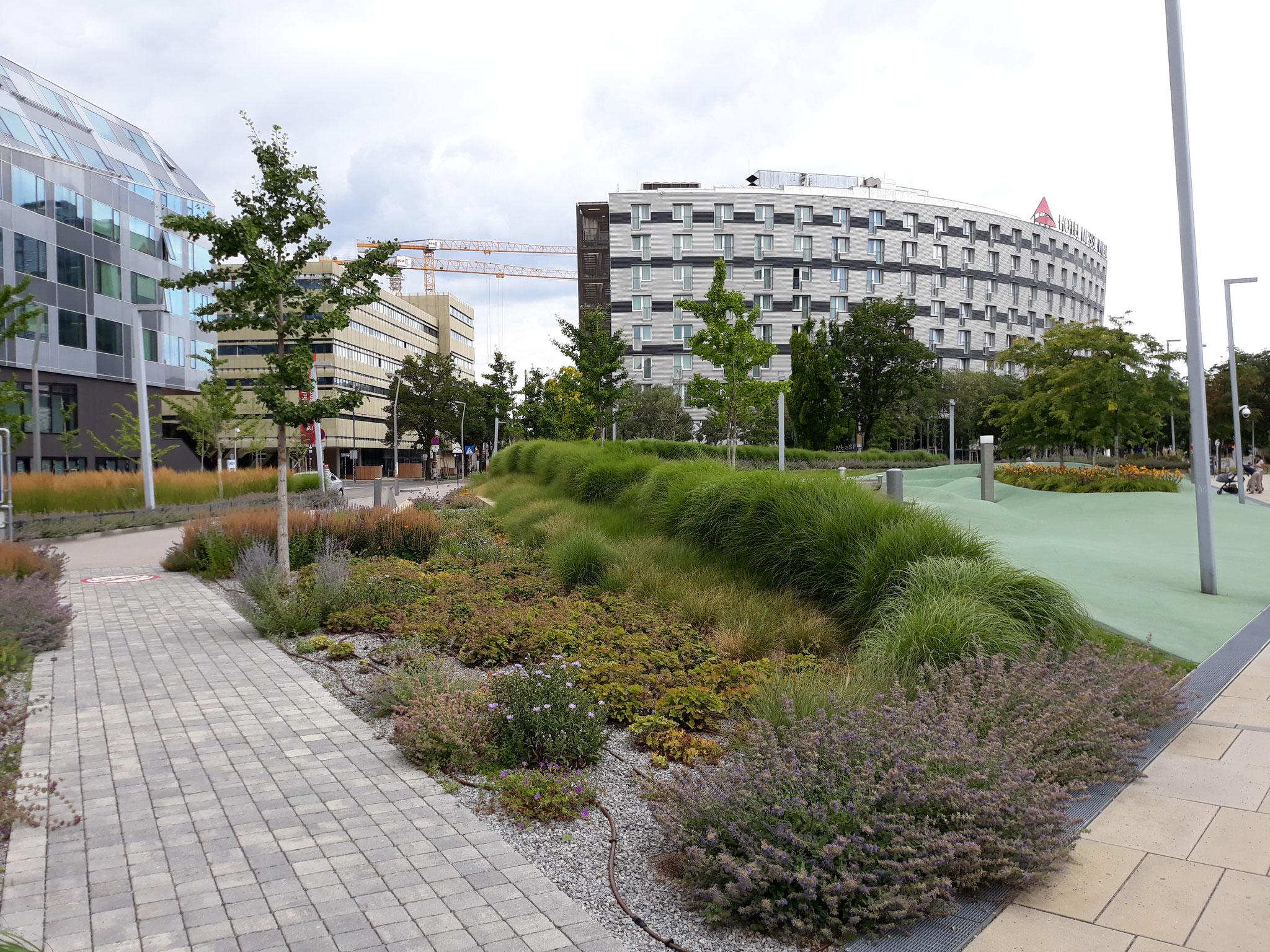 Uno spazio verde al interno del Campus
