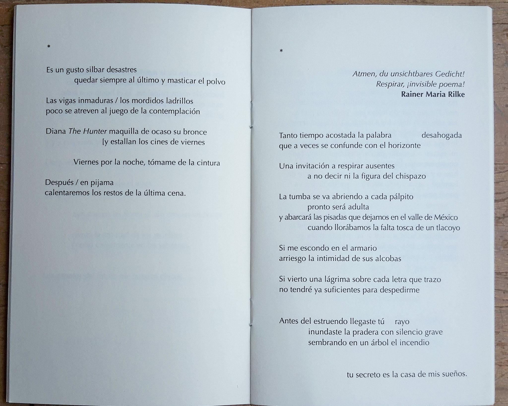 Poemas muy tarde / Bruno Dario