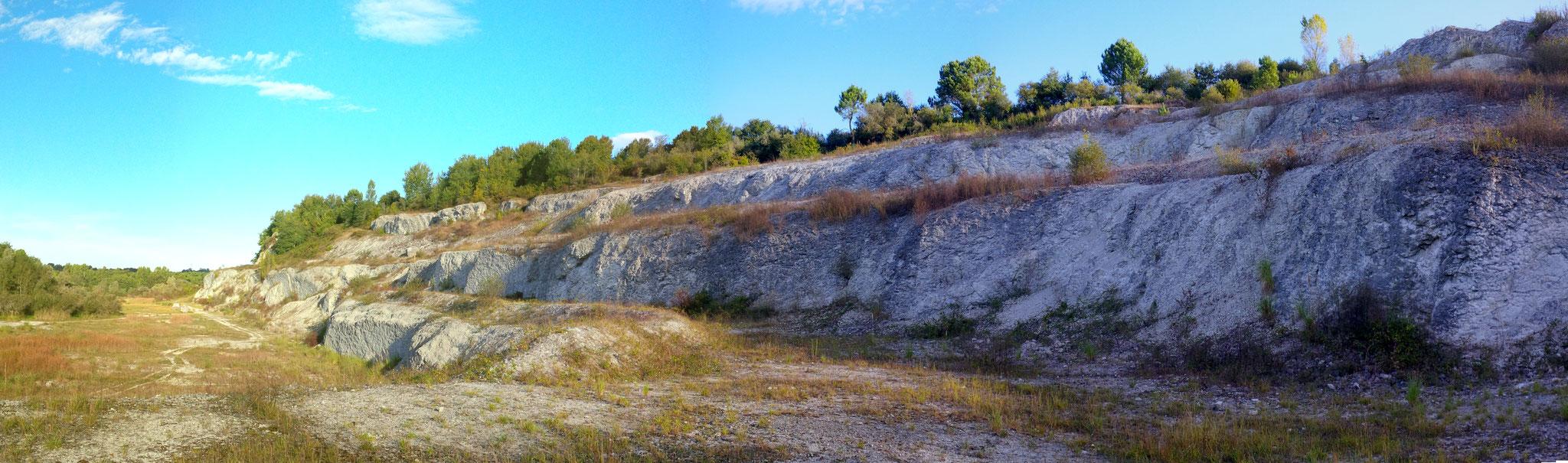 Stratotype de limite Campanien/Maastrichtien en Réserve Naturelle Régionale du site des carrières de Tercis-les-Bains – Landes (Cliché RNGSLB) – site classé ***