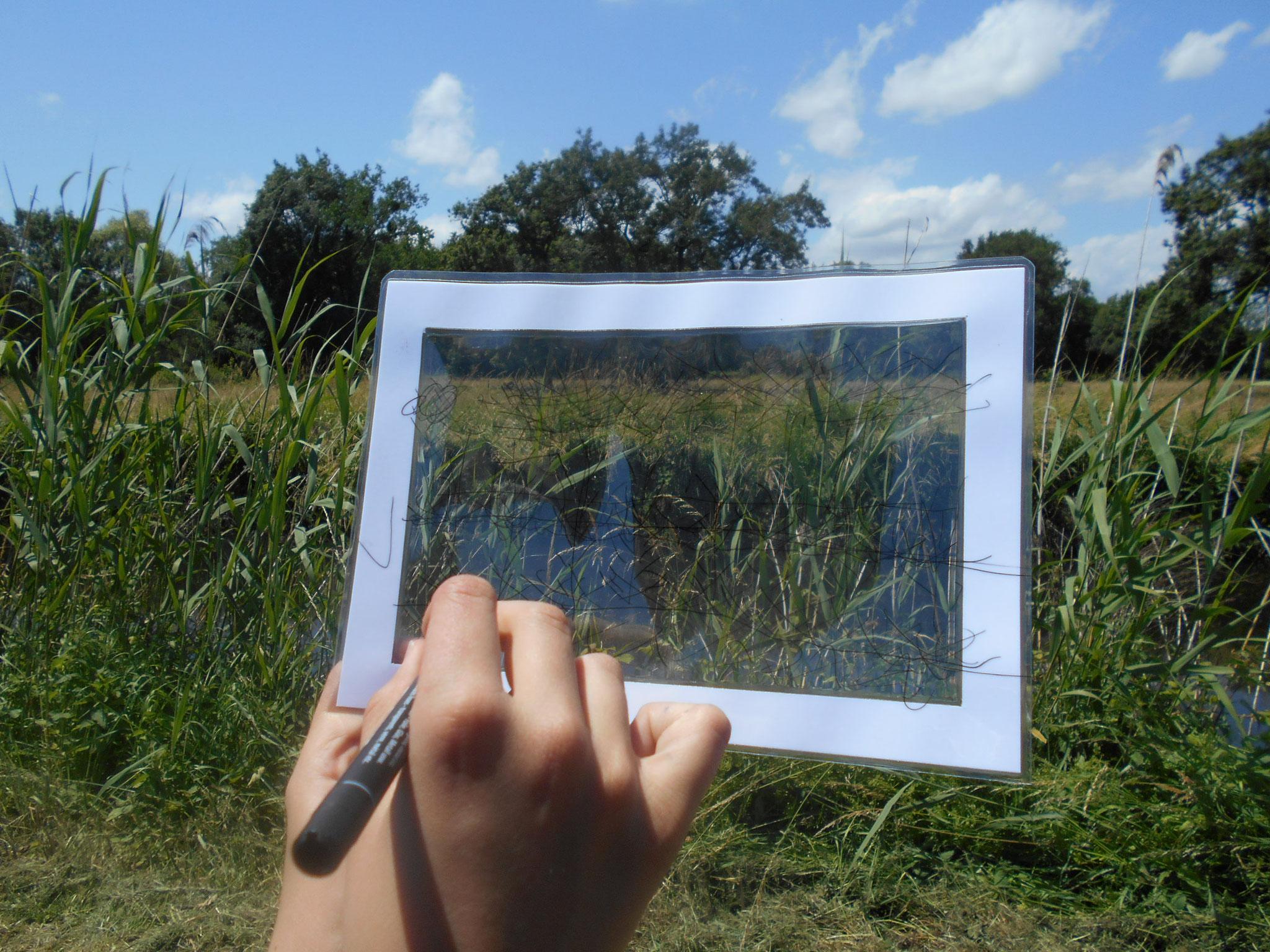 On trace à main levé les principales lignes du paysage.