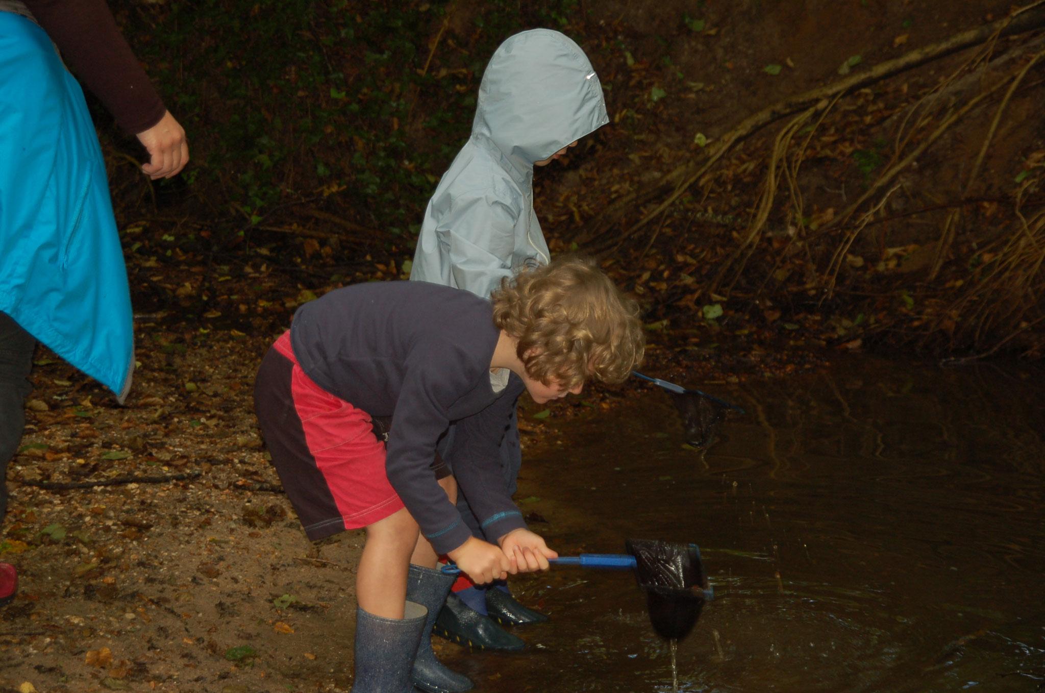 pêche des petites bêtes