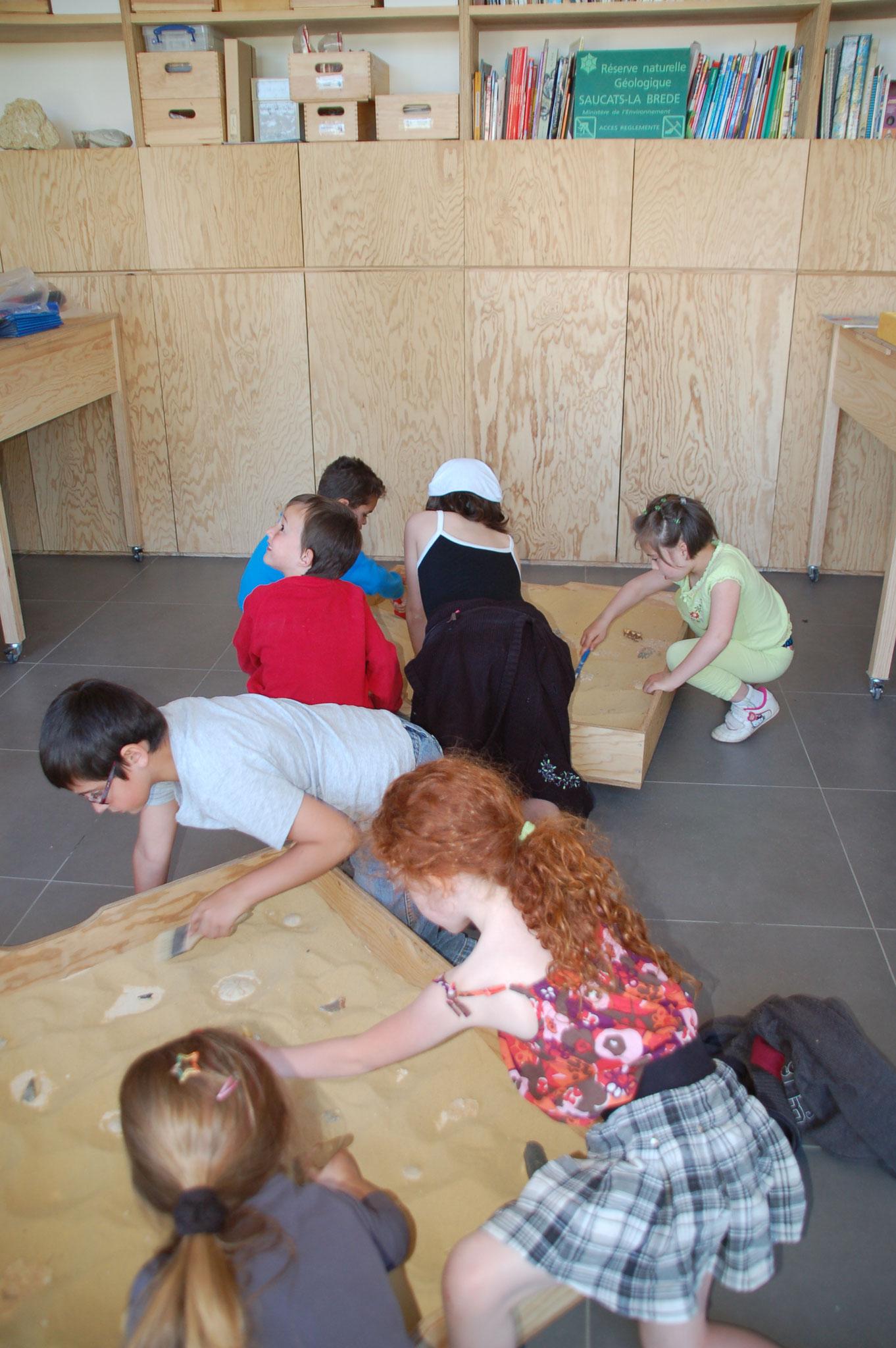Que nous racontent les fossiles : les bacs de fouille