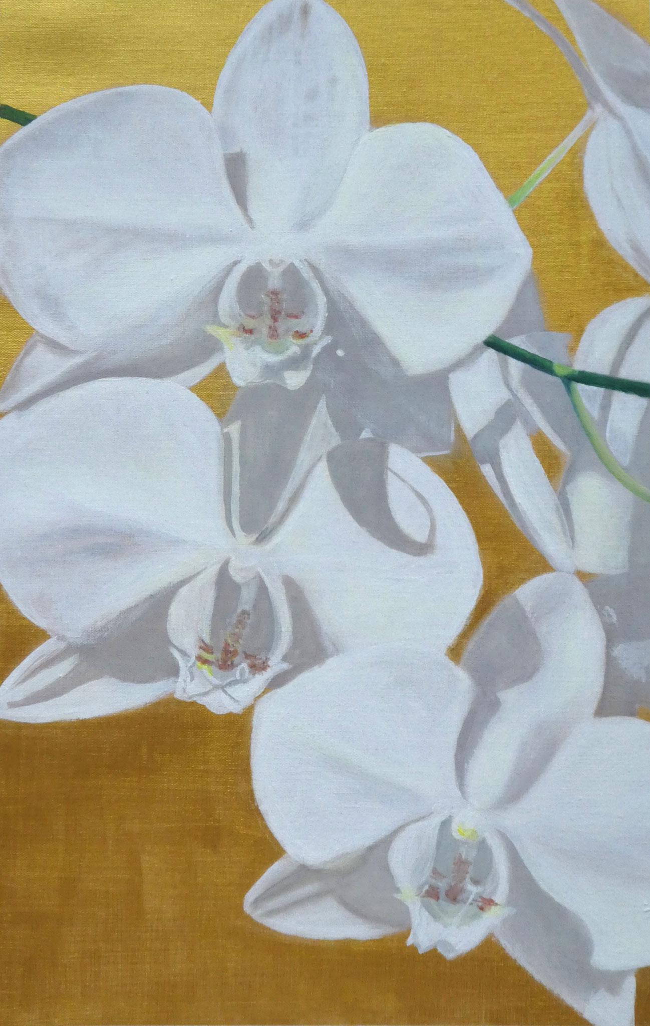 Orchideen auf Gold (1) (40 x 60)