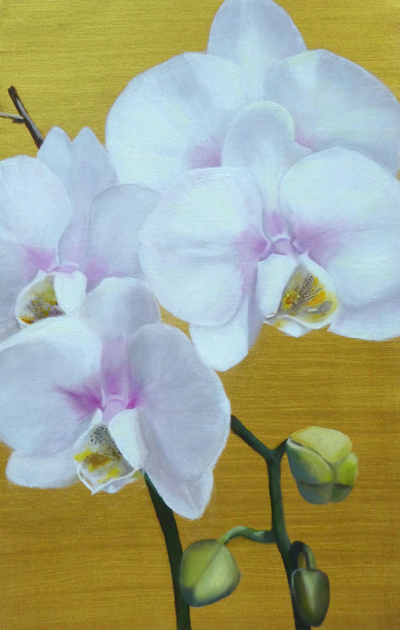 Orchideen auf Gold (6) (40 x 60)