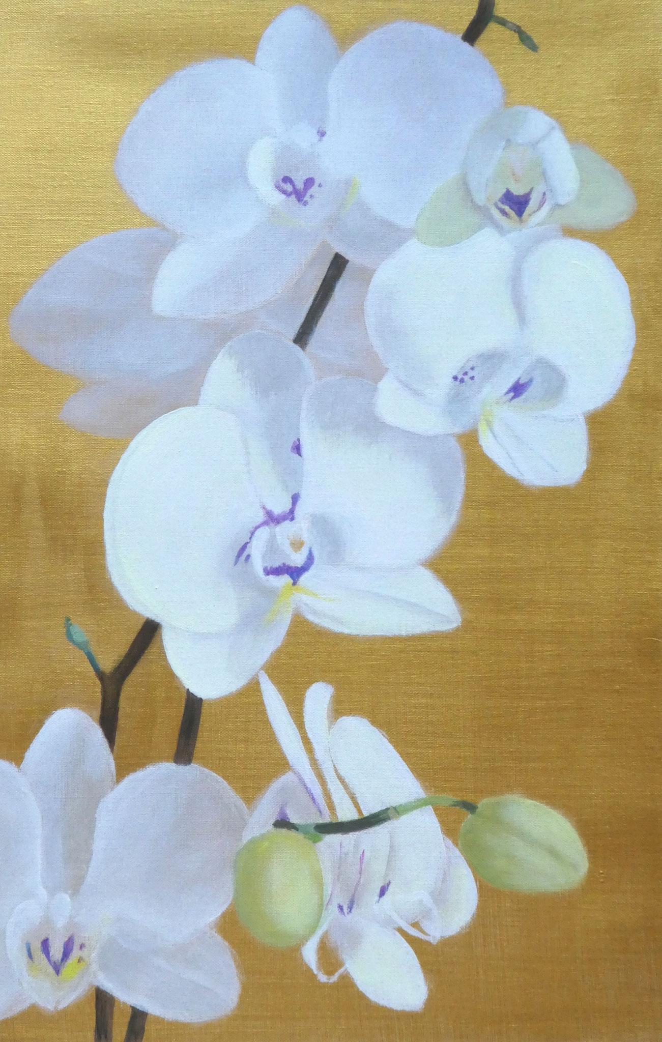 Orchideen auf Gold (4) (40 x 60)