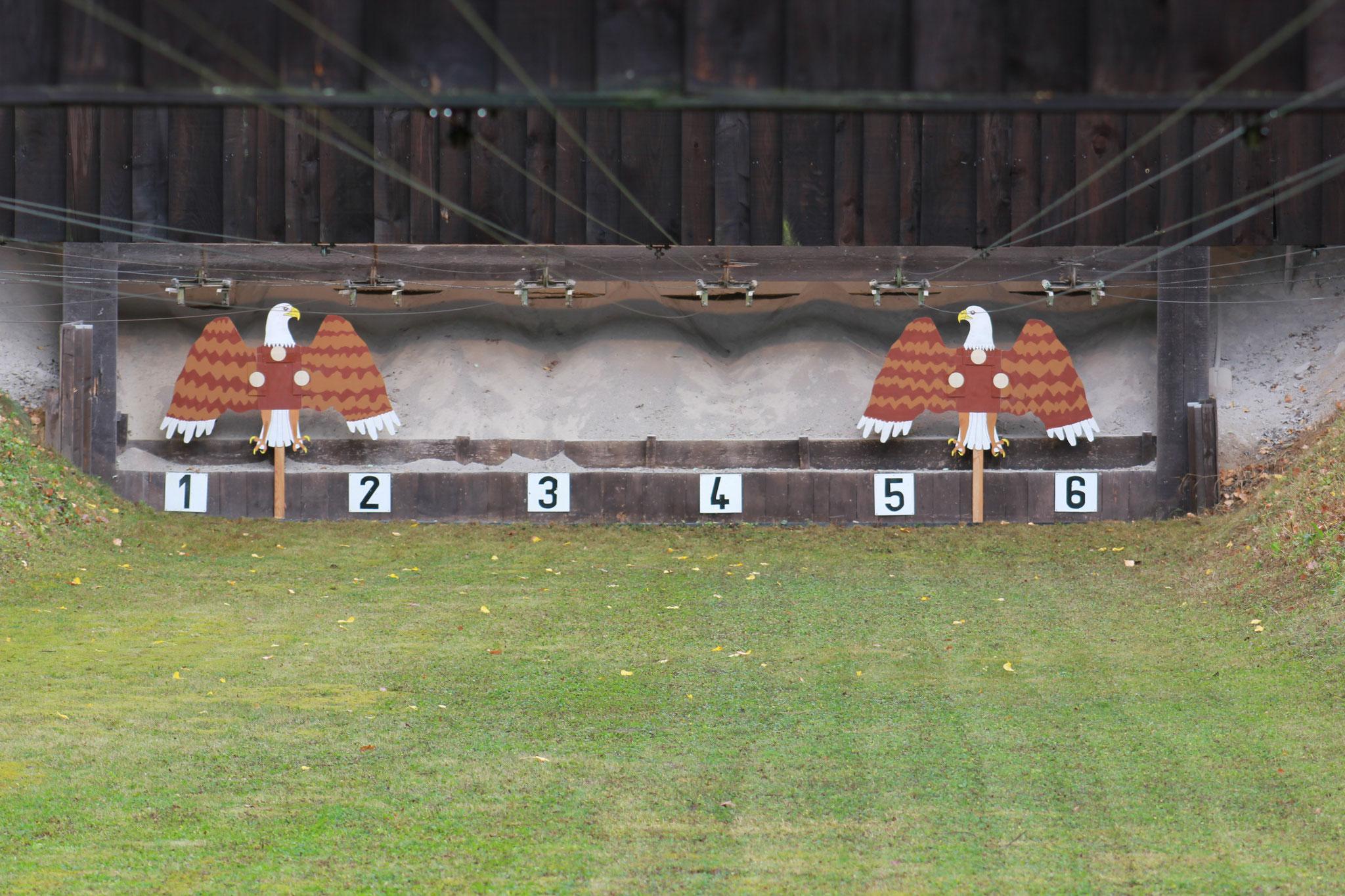 50 Meter Schussdistanz ... ein Kinderspiel ... oder?