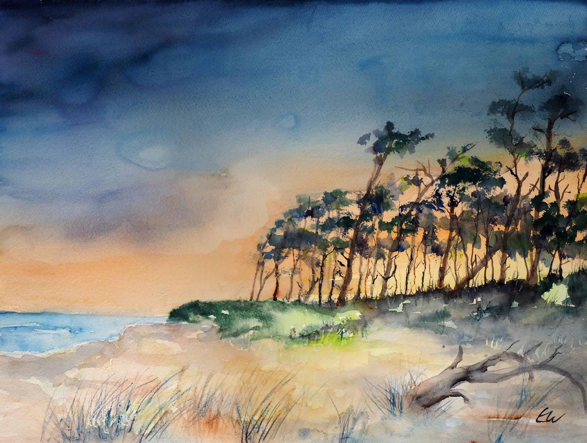 Weststrand auf dem Darss, Aquarell 45x60 cm, Elvira Walther