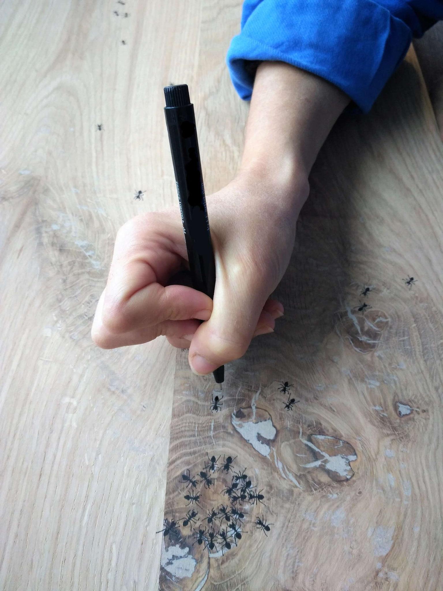 Dessin de fourmis à l'encre de chine © Atelier Marlène Vidal