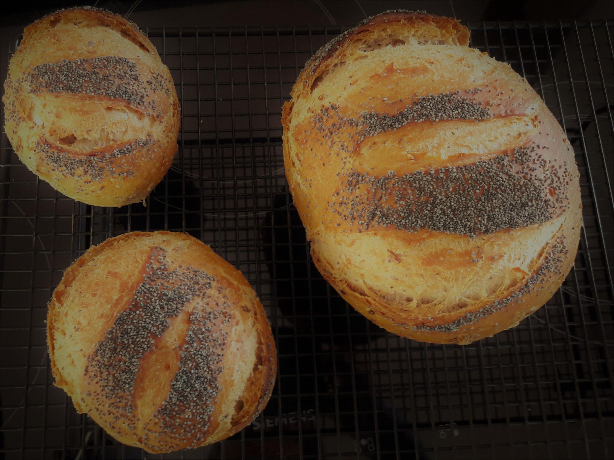 das tägliche Brot bei uns