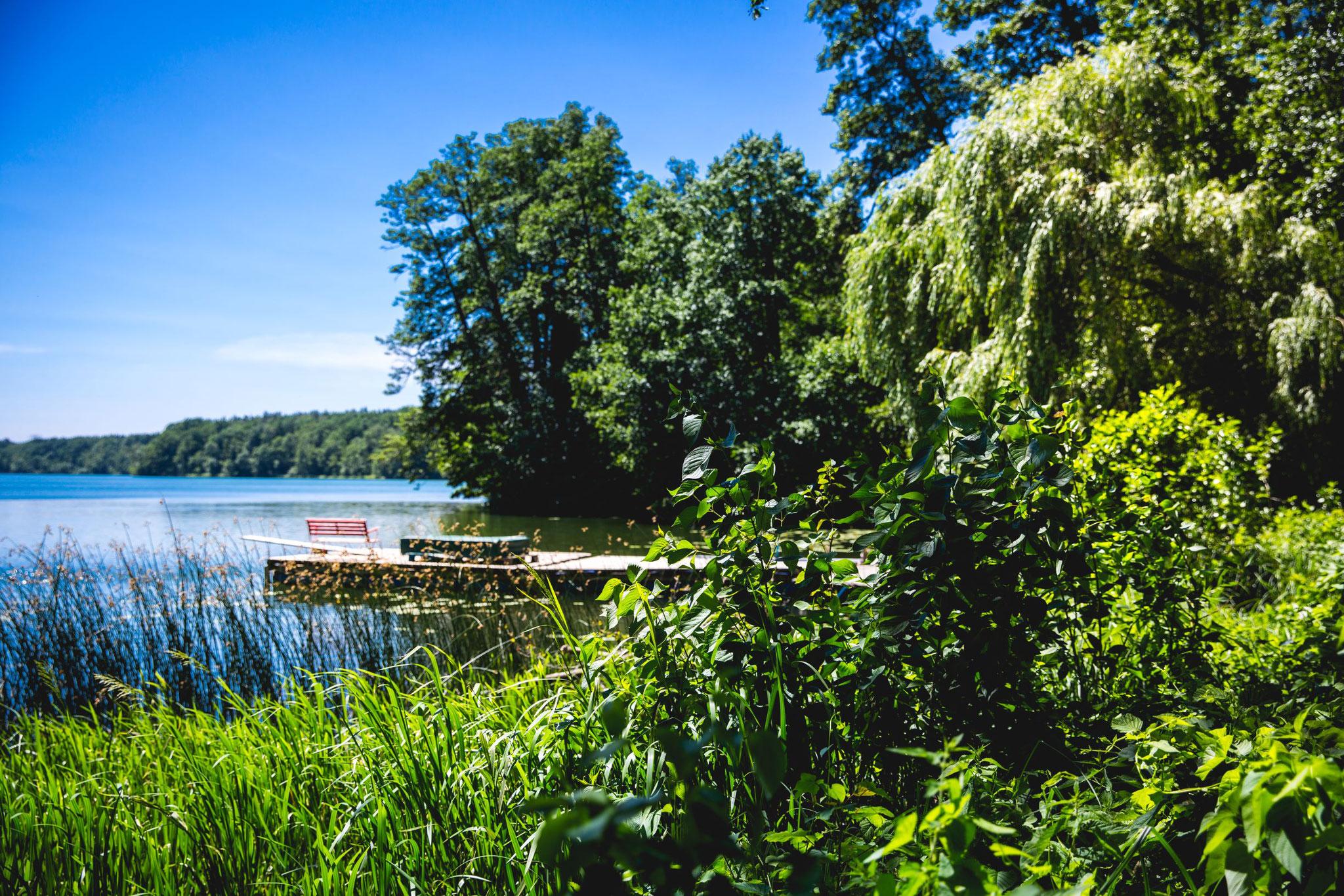 Seen- und Waldlandschaft ringsherum